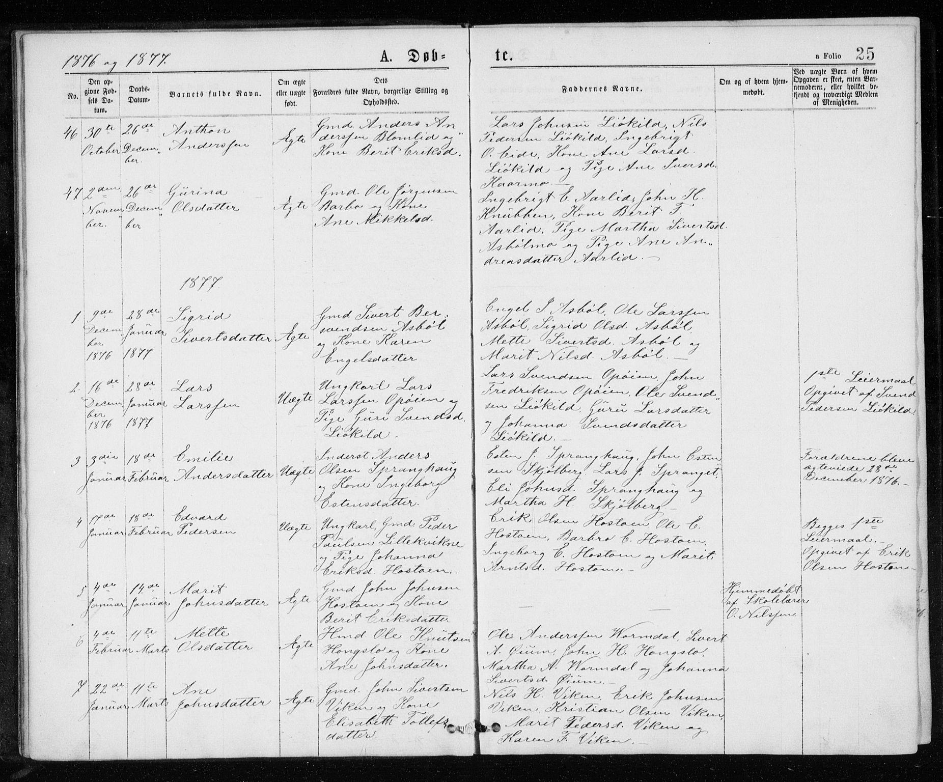 SAT, Ministerialprotokoller, klokkerbøker og fødselsregistre - Sør-Trøndelag, 671/L0843: Klokkerbok nr. 671C02, 1873-1892, s. 25