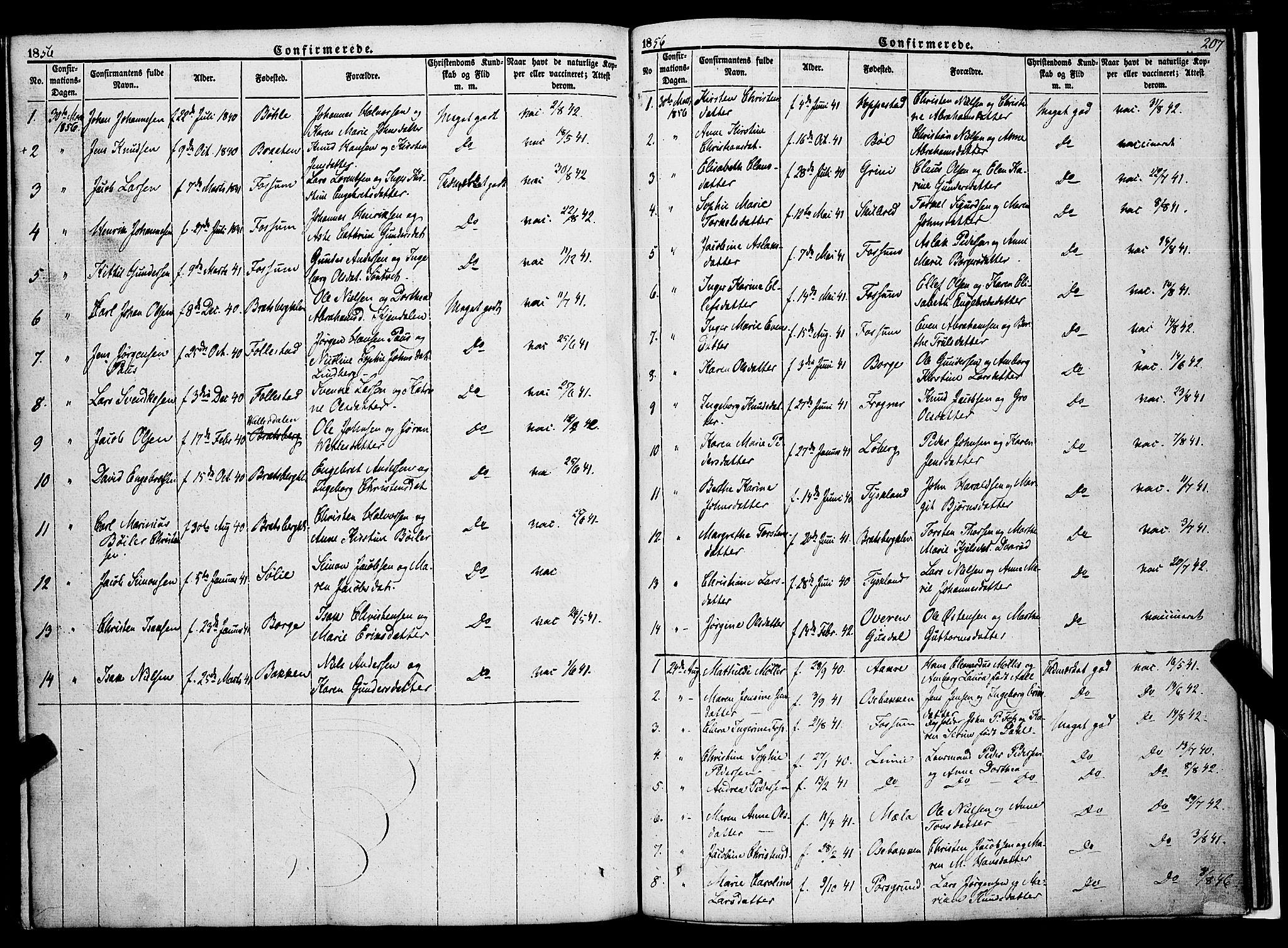 SAKO, Gjerpen kirkebøker, F/Fa/L0007a: Ministerialbok nr. 7A, 1834-1857, s. 207