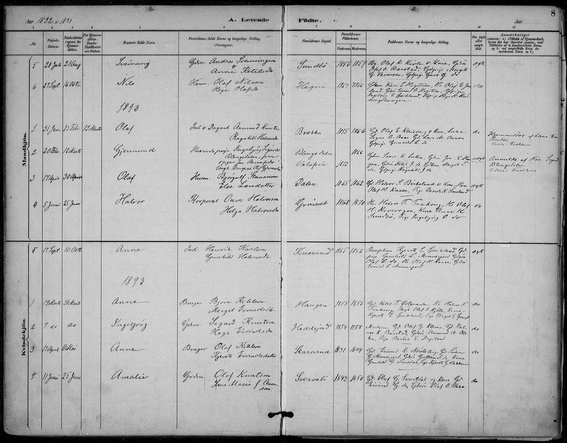 SAKO, Seljord kirkebøker, F/Fb/L0002: Ministerialbok nr. II 2, 1887-1917, s. 8