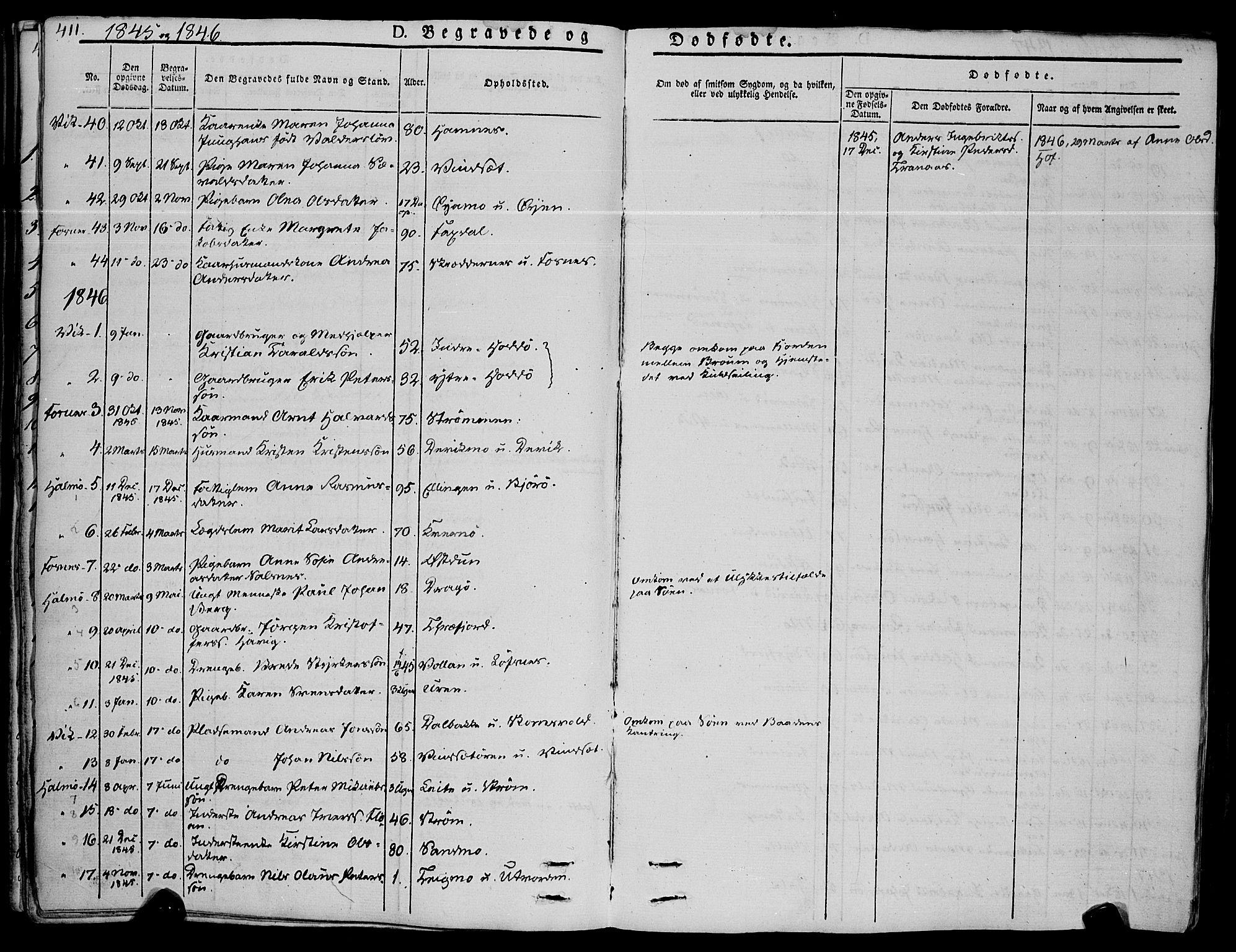 SAT, Ministerialprotokoller, klokkerbøker og fødselsregistre - Nord-Trøndelag, 773/L0614: Ministerialbok nr. 773A05, 1831-1856, s. 411