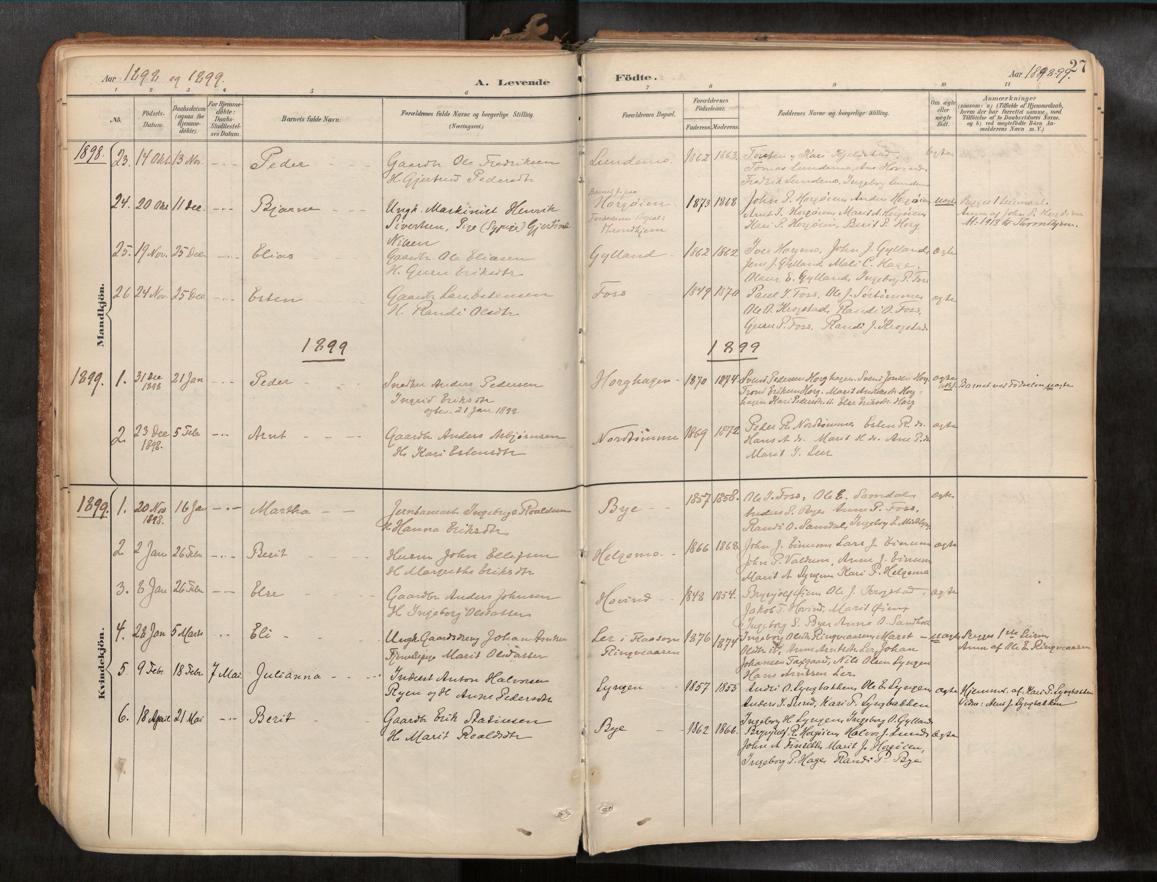 SAT, Ministerialprotokoller, klokkerbøker og fødselsregistre - Sør-Trøndelag, 692/L1105b: Ministerialbok nr. 692A06, 1891-1934, s. 27