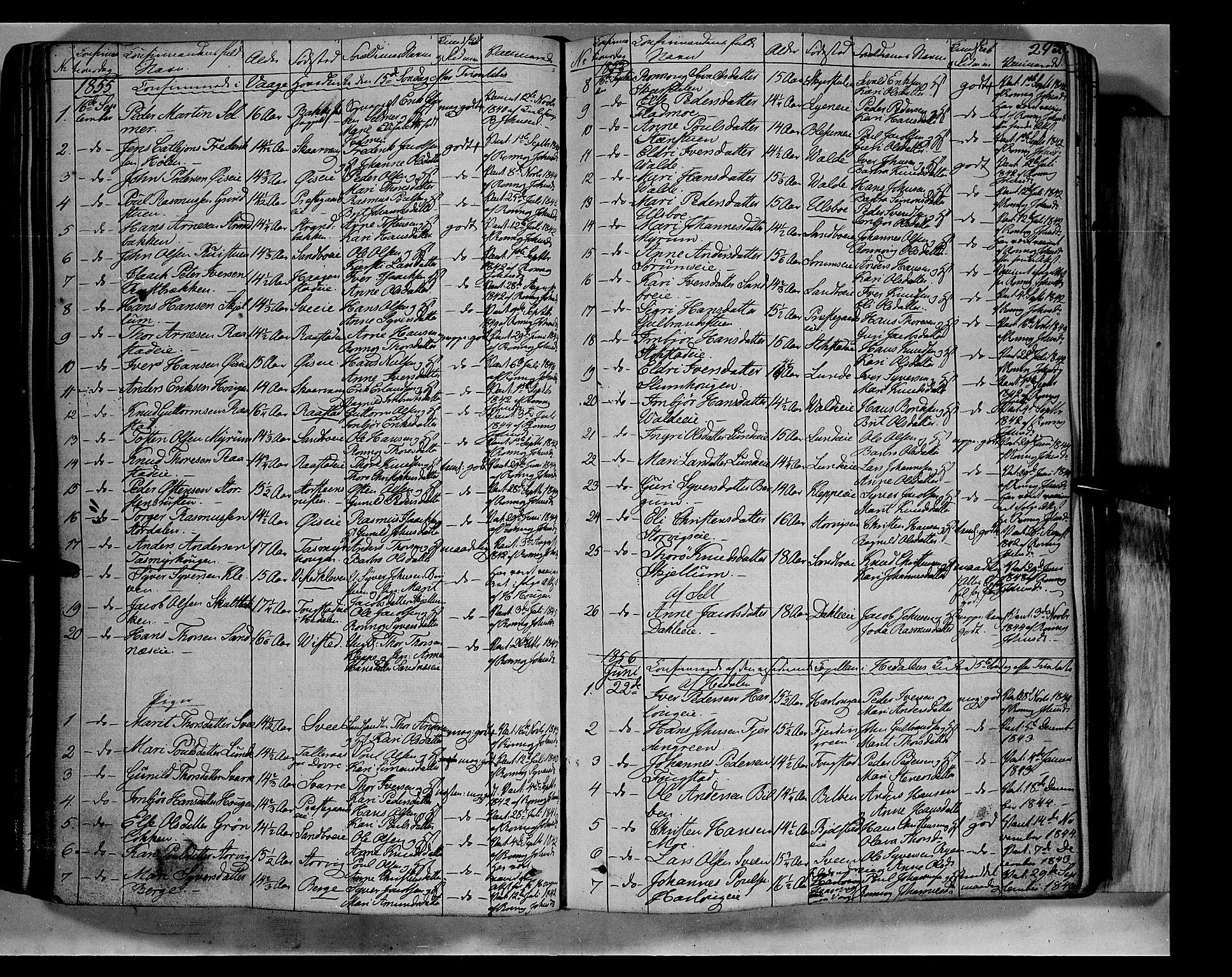 SAH, Vågå prestekontor, Ministerialbok nr. 5 /1, 1842-1856, s. 293