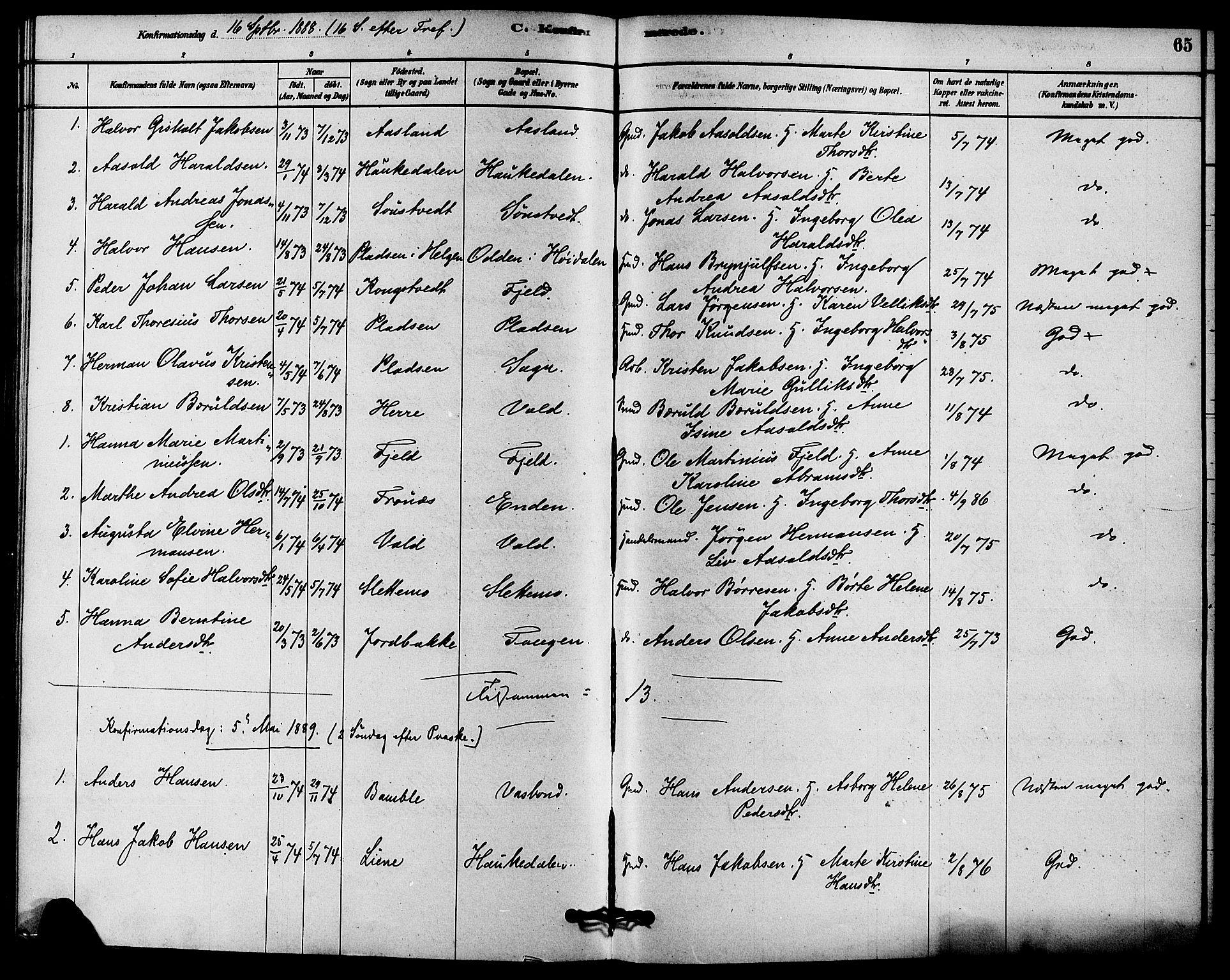 SAKO, Solum kirkebøker, F/Fc/L0001: Ministerialbok nr. III 1, 1877-1891, s. 65