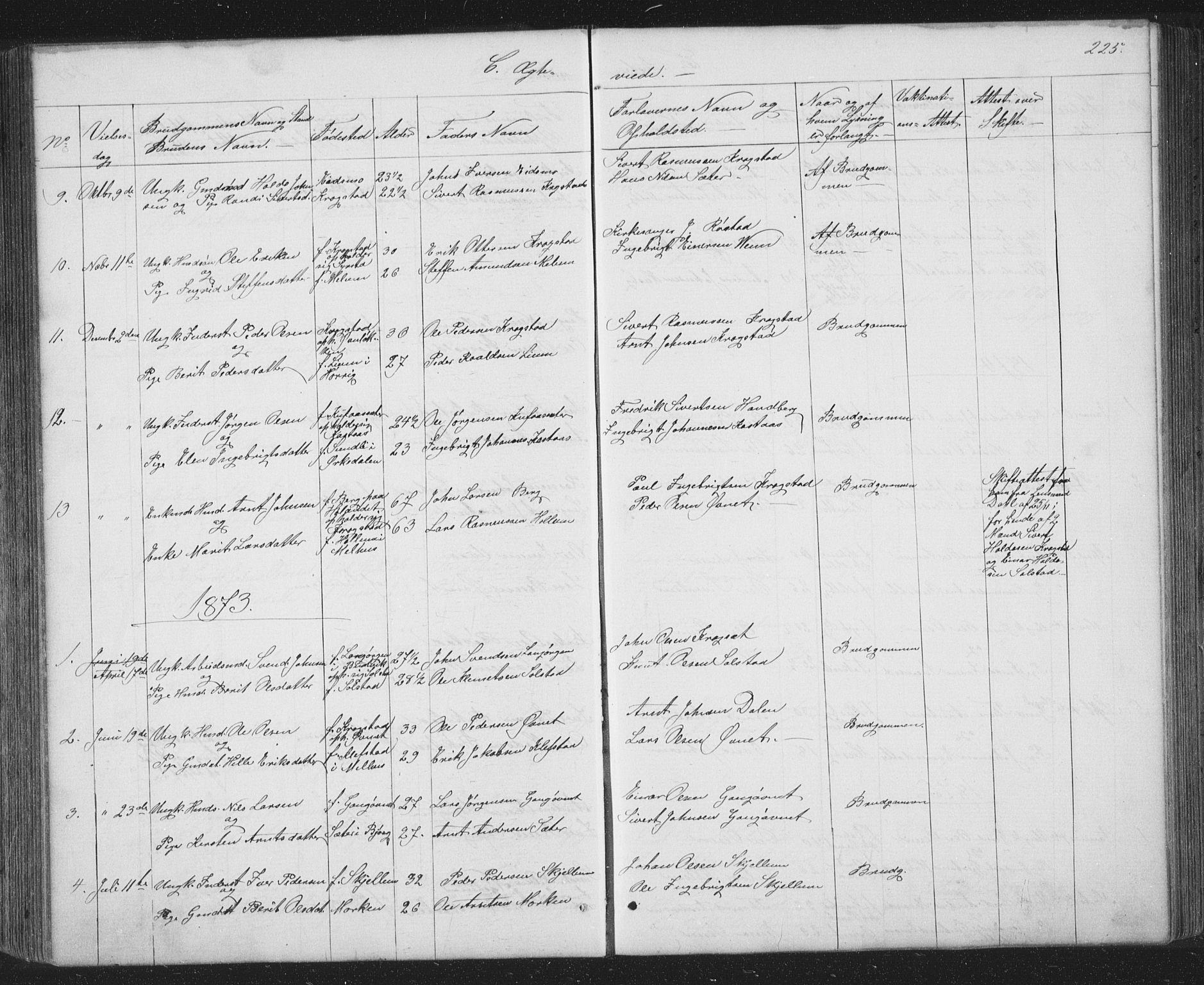 SAT, Ministerialprotokoller, klokkerbøker og fødselsregistre - Sør-Trøndelag, 667/L0798: Klokkerbok nr. 667C03, 1867-1929, s. 225