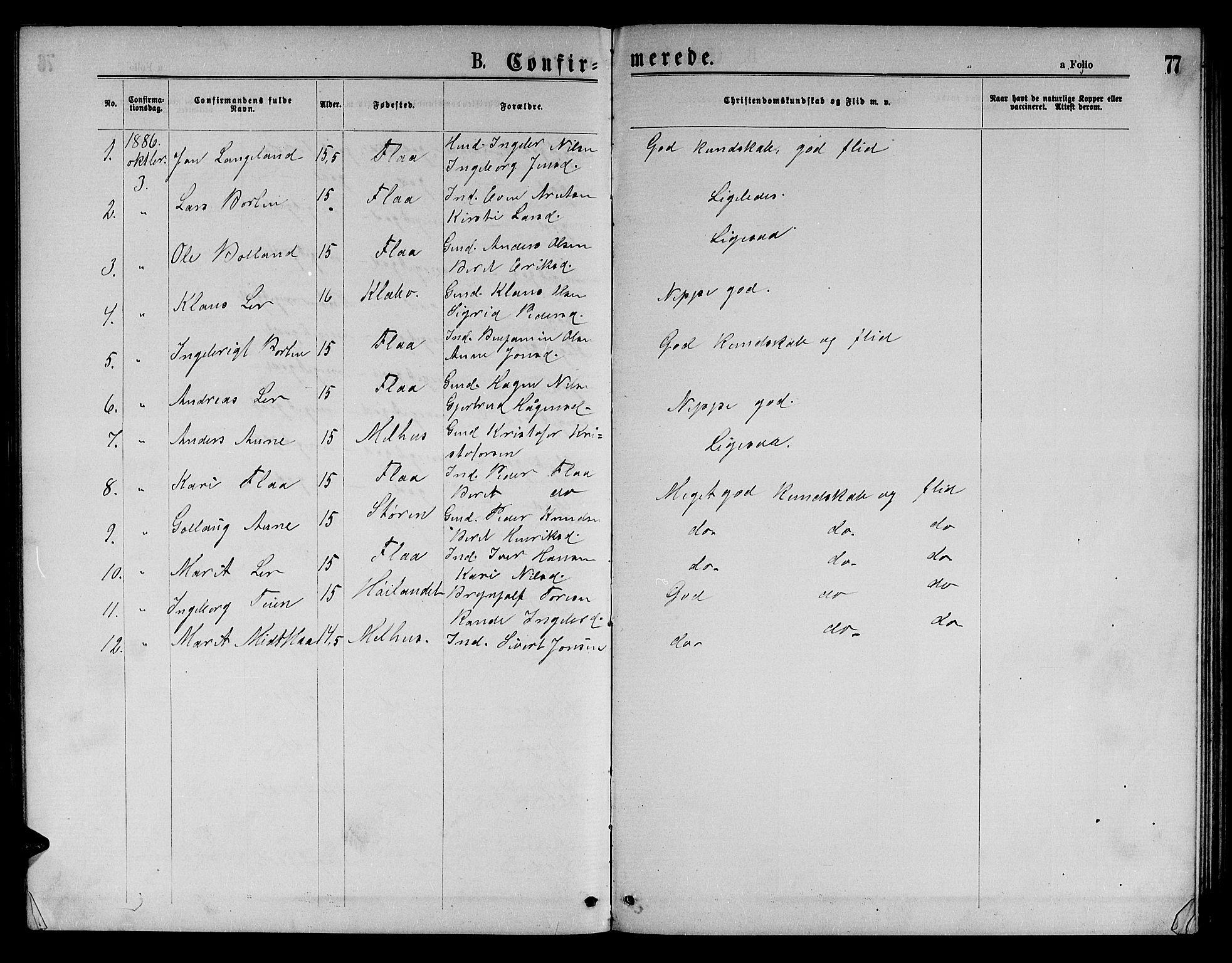 SAT, Ministerialprotokoller, klokkerbøker og fødselsregistre - Sør-Trøndelag, 693/L1122: Klokkerbok nr. 693C03, 1870-1886, s. 77