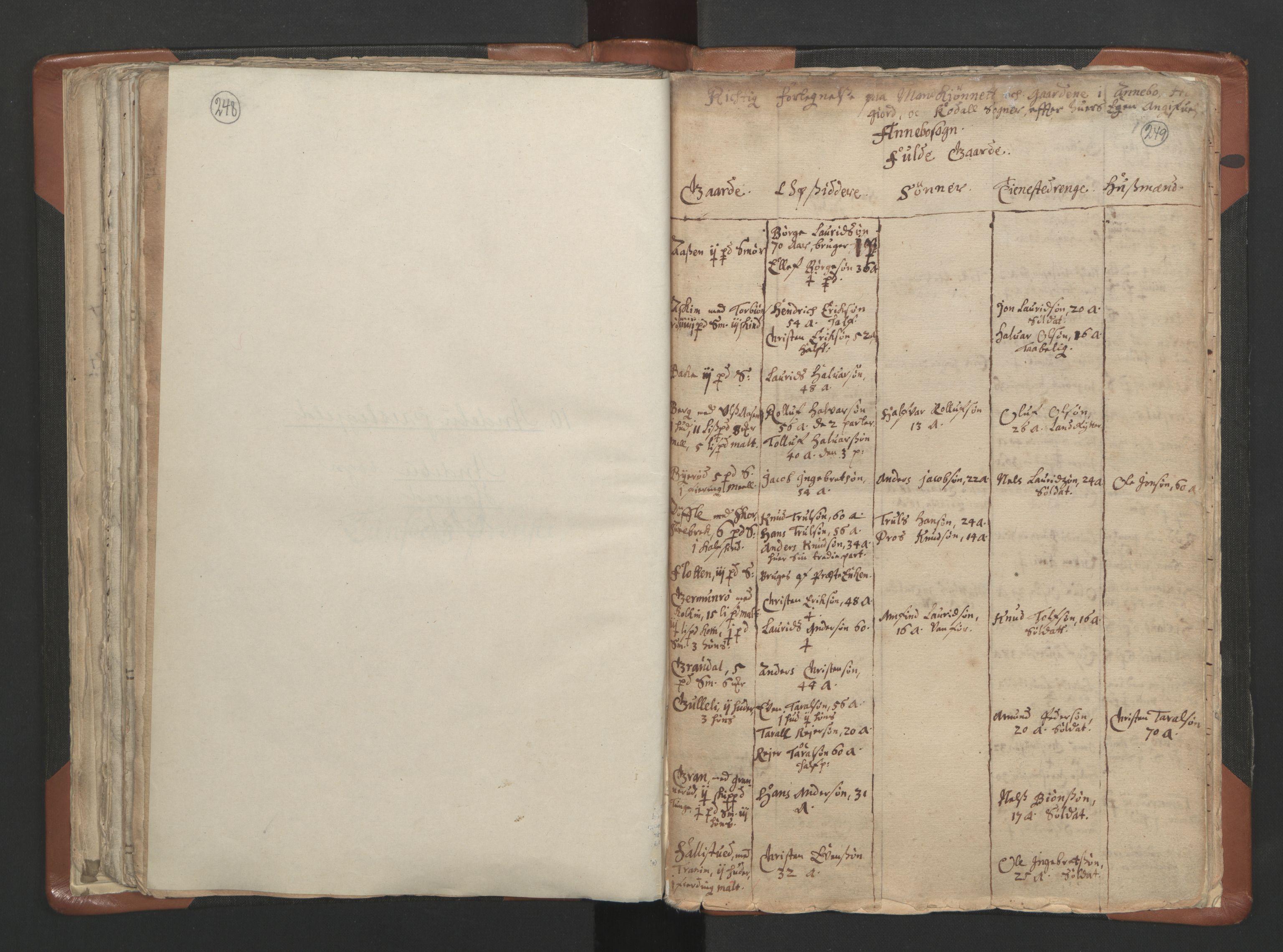 RA, Sogneprestenes manntall 1664-1666, nr. 10: Tønsberg prosti, 1664-1666, s. 248-249