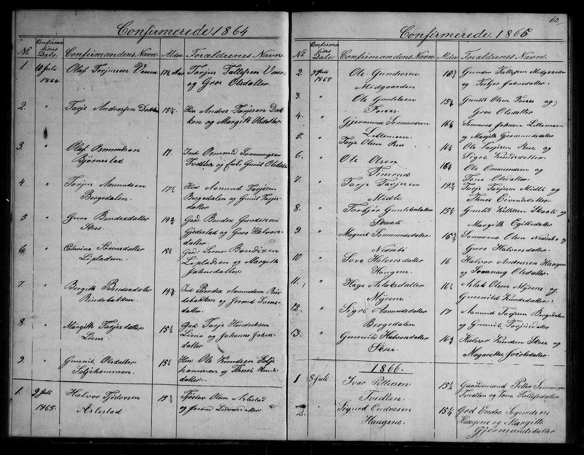 SAKO, Fyresdal kirkebøker, G/Gb/L0001: Klokkerbok nr. II 1, 1864-1890, s. 60