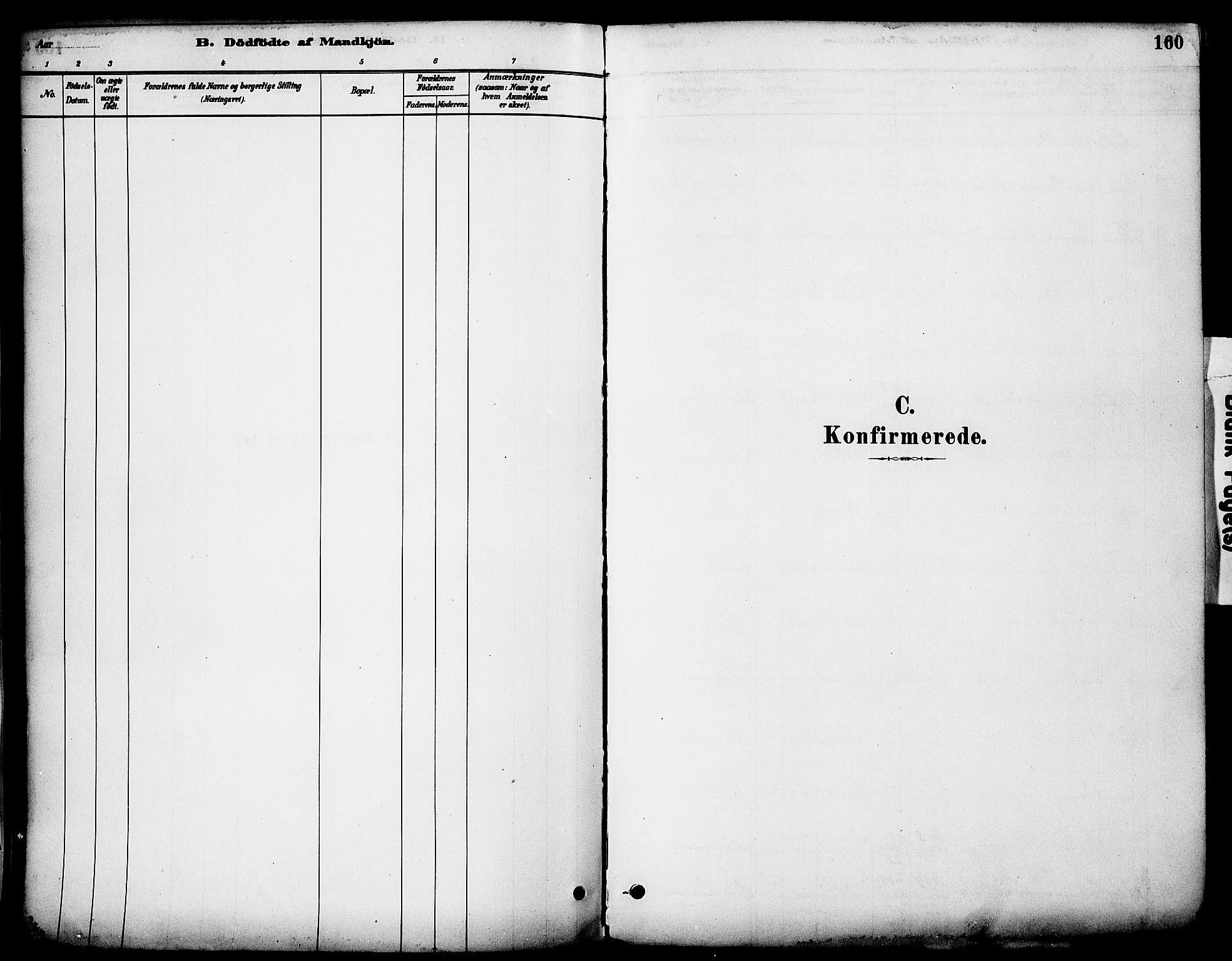 SAH, Stange prestekontor, K/L0017: Ministerialbok nr. 17, 1880-1893, s. 160