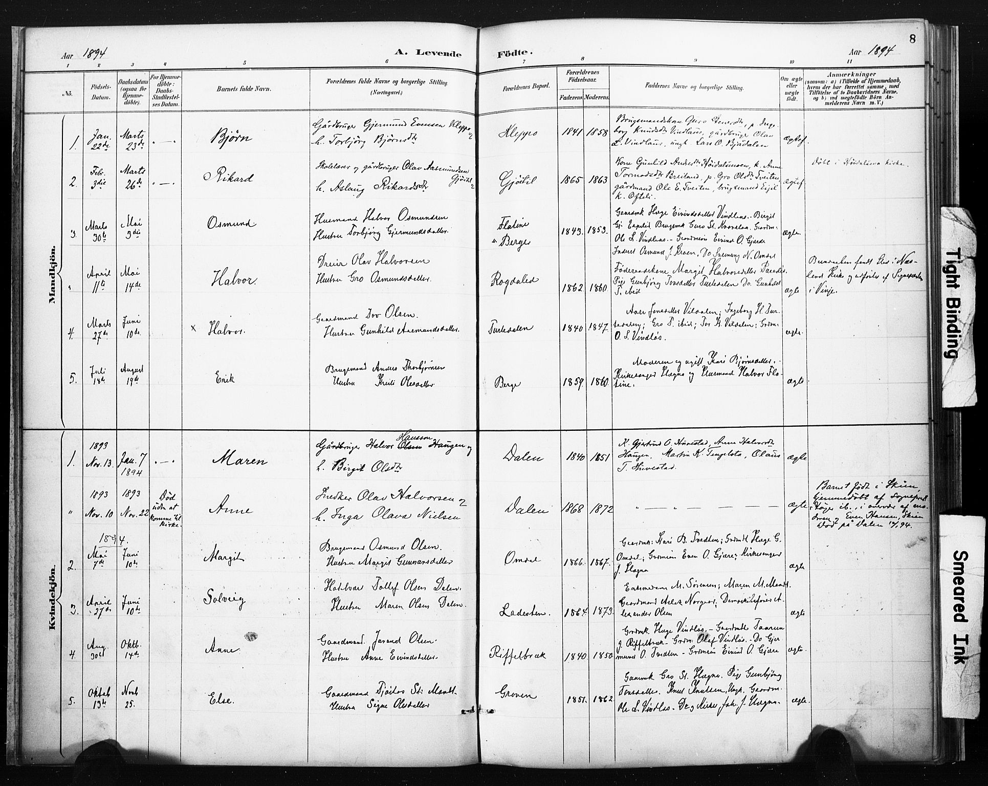 SAKO, Lårdal kirkebøker, F/Fb/L0002: Ministerialbok nr. II 2, 1887-1918, s. 8