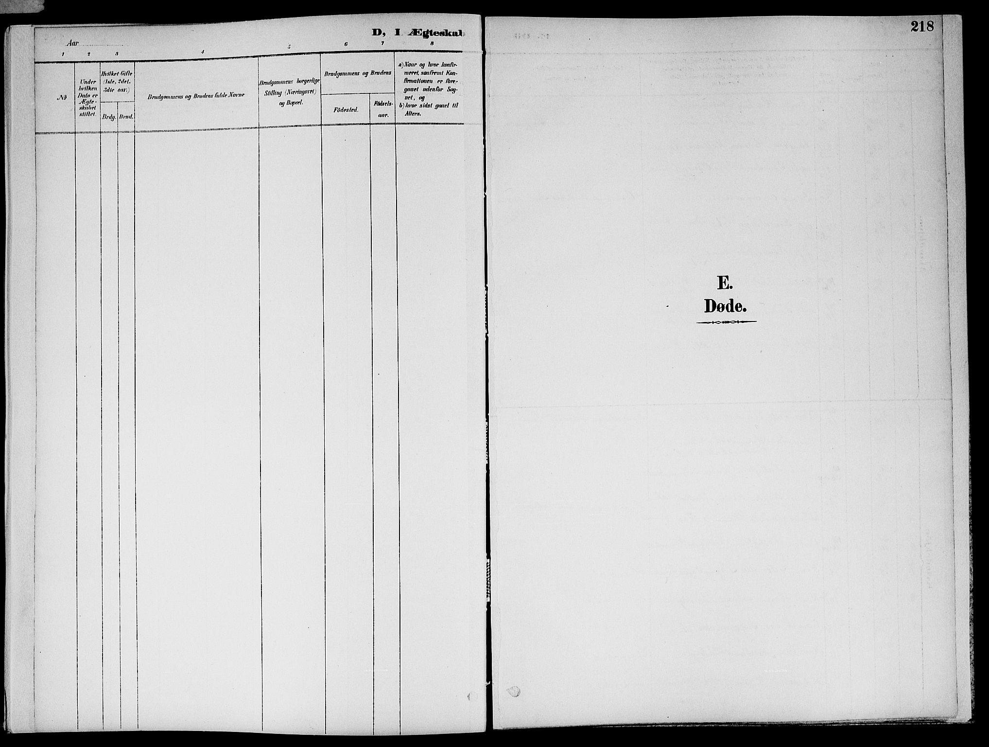 SAT, Ministerialprotokoller, klokkerbøker og fødselsregistre - Nord-Trøndelag, 773/L0617: Ministerialbok nr. 773A08, 1887-1910, s. 218