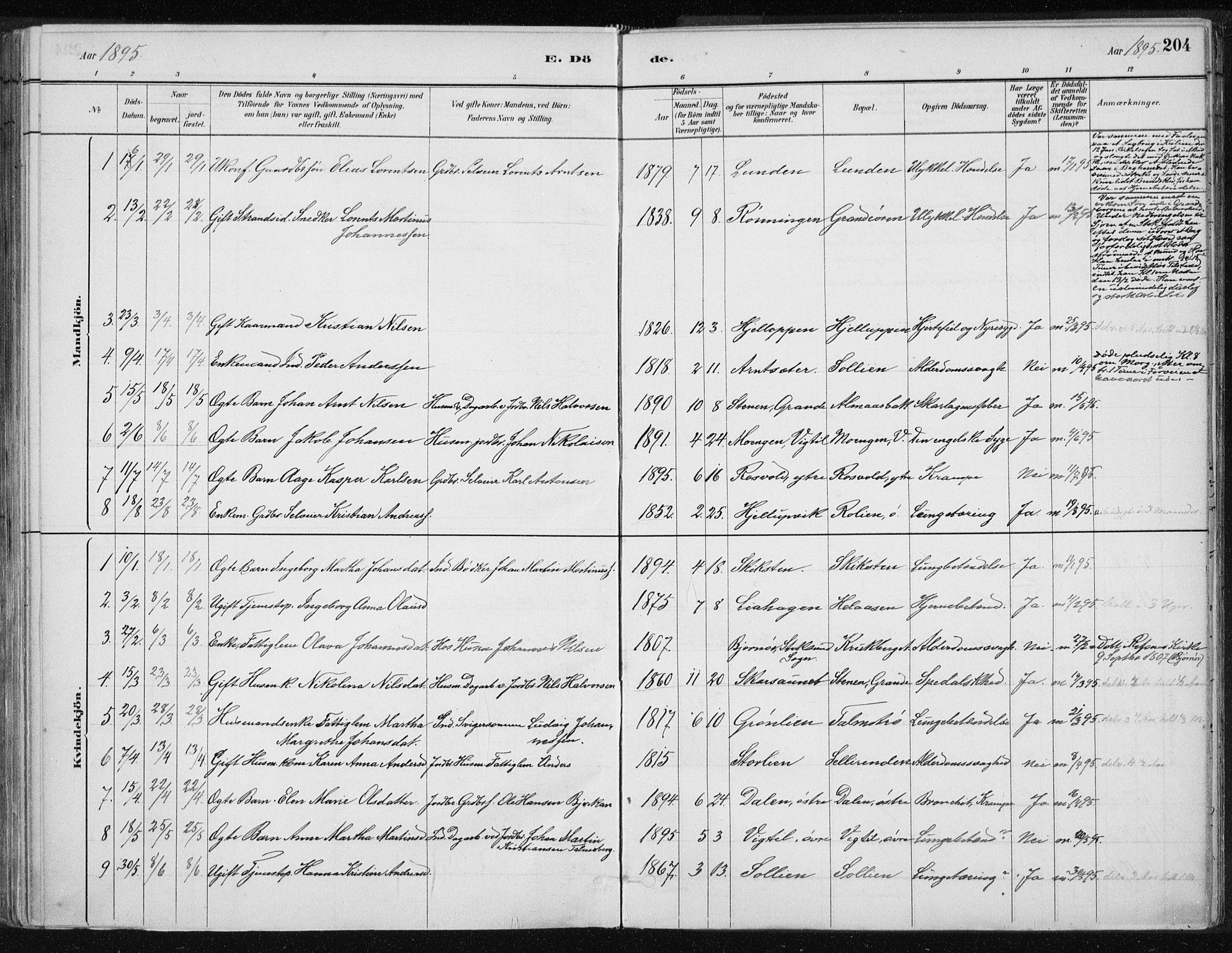 SAT, Ministerialprotokoller, klokkerbøker og fødselsregistre - Nord-Trøndelag, 701/L0010: Ministerialbok nr. 701A10, 1883-1899, s. 204