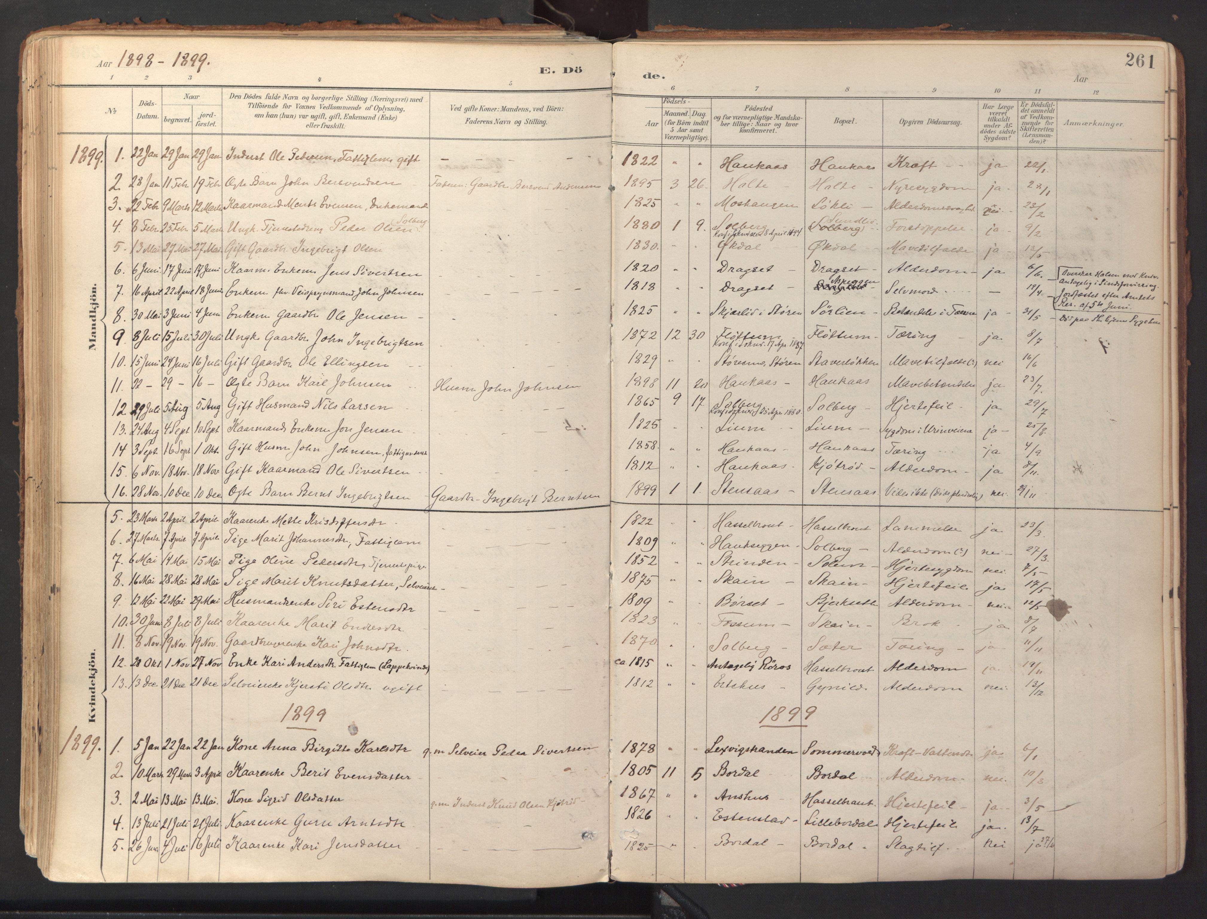 SAT, Ministerialprotokoller, klokkerbøker og fødselsregistre - Sør-Trøndelag, 689/L1041: Ministerialbok nr. 689A06, 1891-1923, s. 261