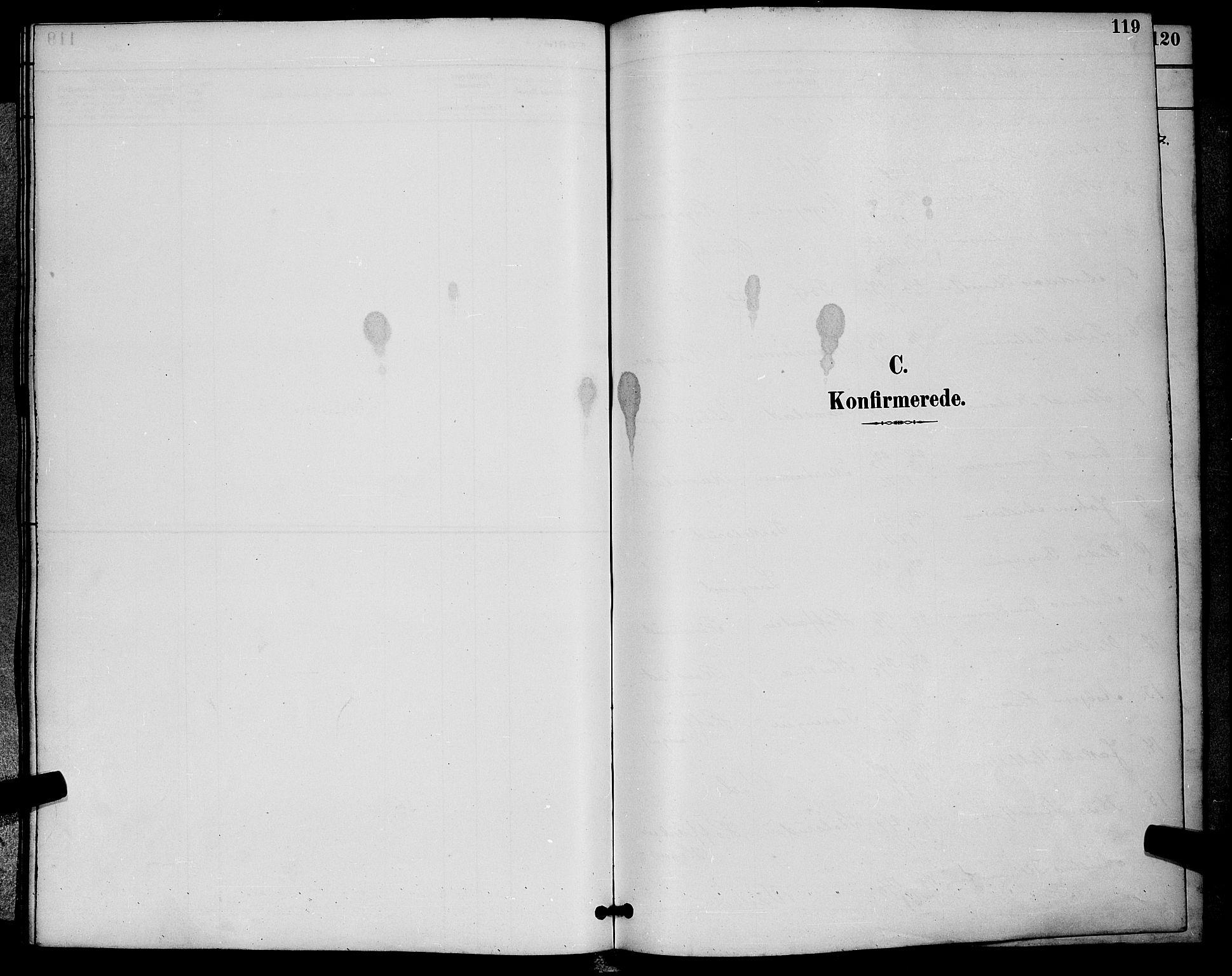 SAKO, Sigdal kirkebøker, G/Ga/L0005: Klokkerbok nr. I 5, 1886-1900, s. 119