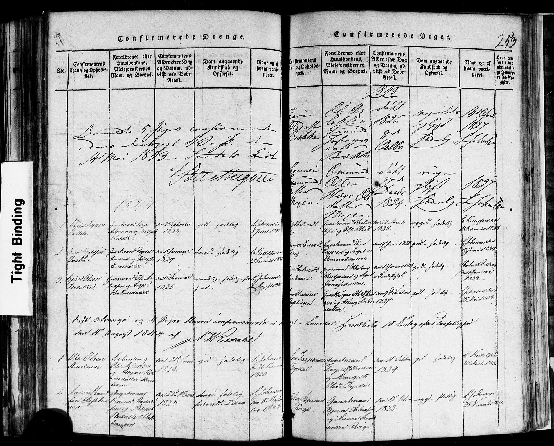 SAKO, Rauland kirkebøker, F/Fa/L0002: Ministerialbok nr. 2, 1815-1860, s. 253