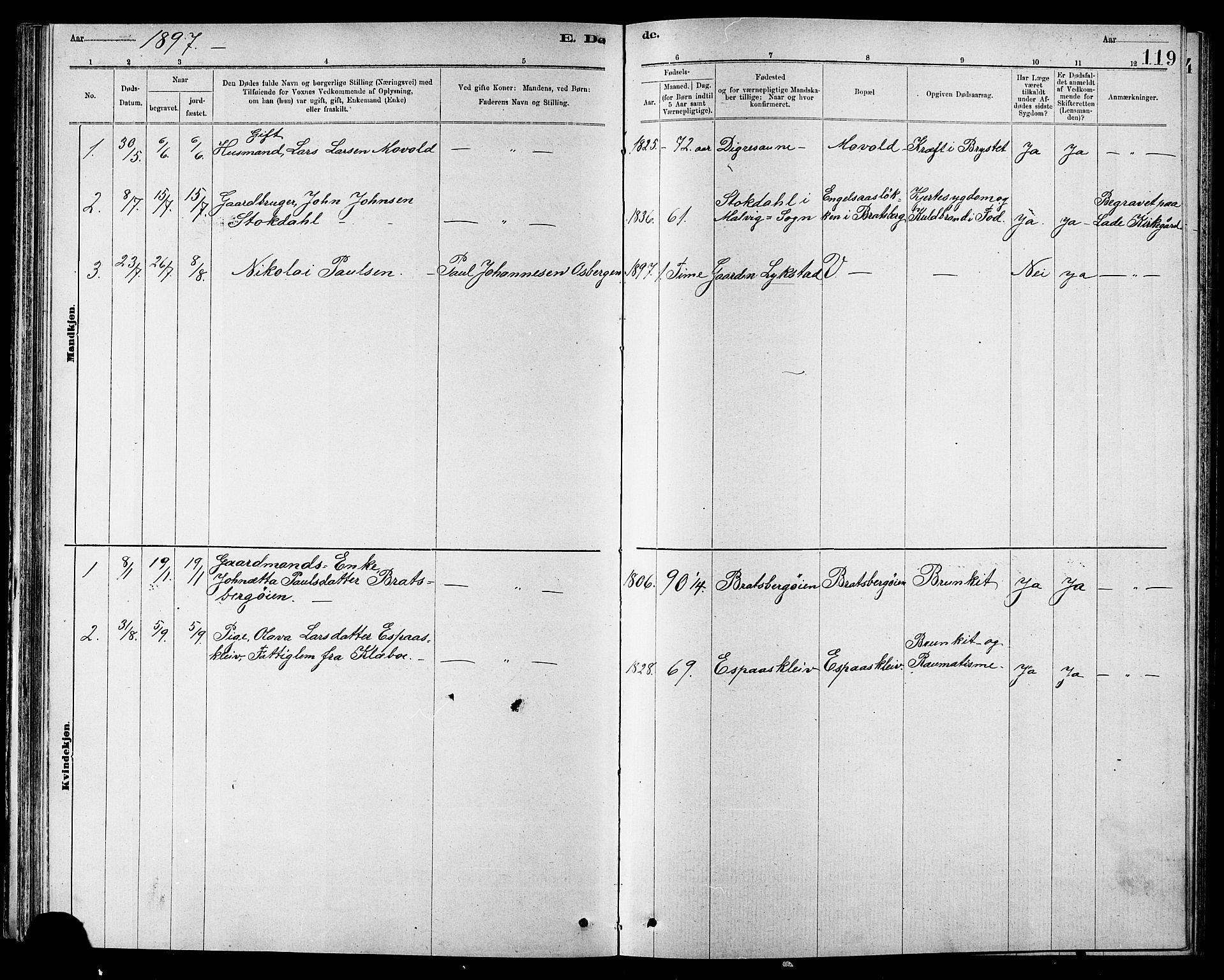 SAT, Ministerialprotokoller, klokkerbøker og fødselsregistre - Sør-Trøndelag, 608/L0341: Klokkerbok nr. 608C07, 1890-1912, s. 119