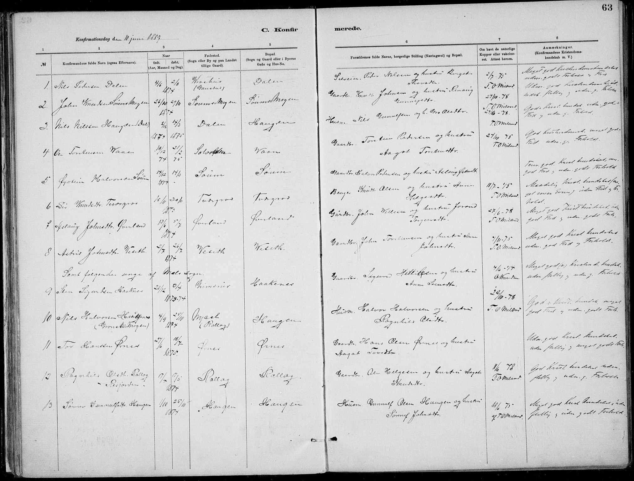 SAKO, Rjukan kirkebøker, F/Fa/L0001: Ministerialbok nr. 1, 1878-1912, s. 63