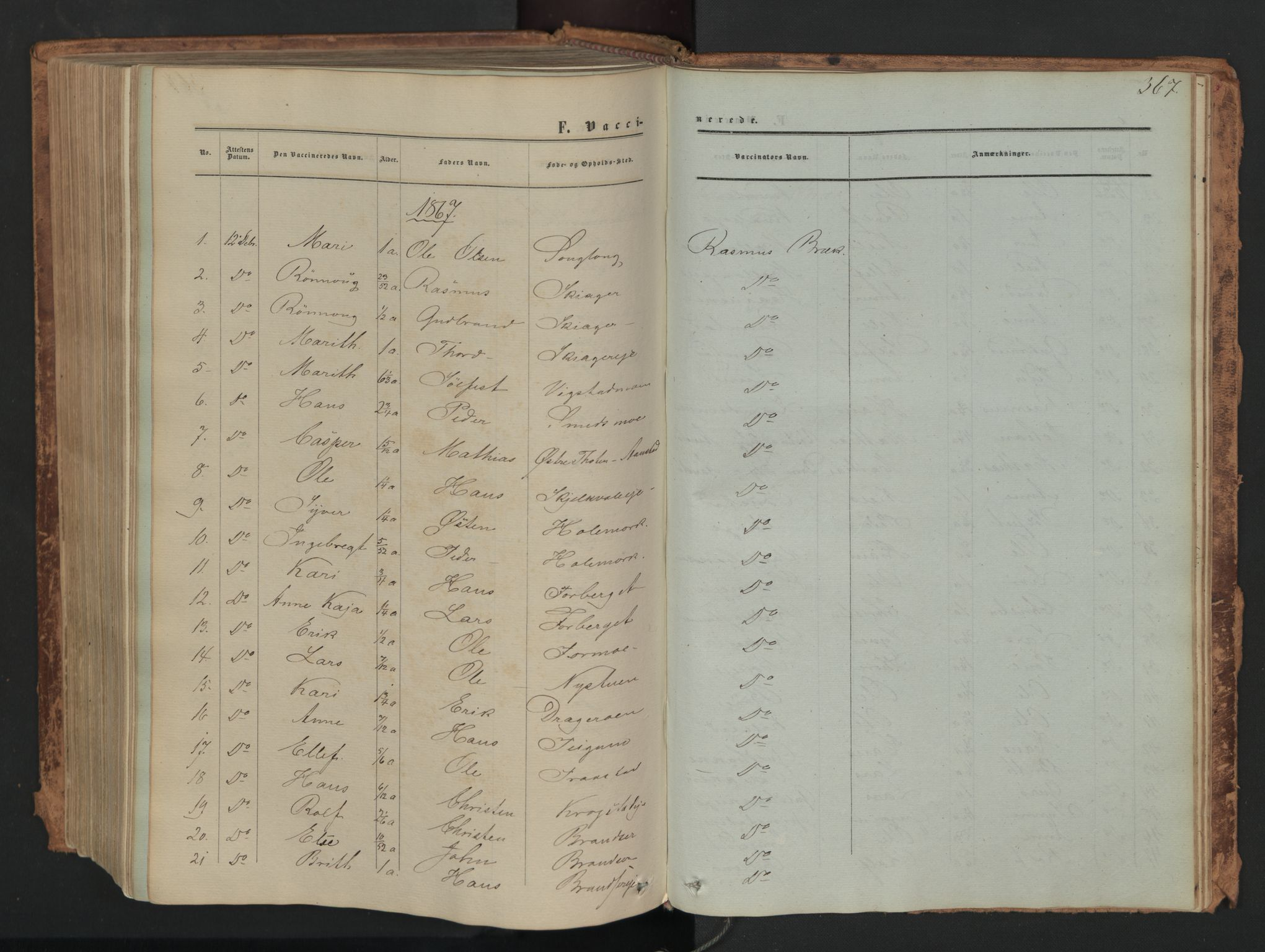 SAH, Skjåk prestekontor, Ministerialbok nr. 1, 1863-1879, s. 367