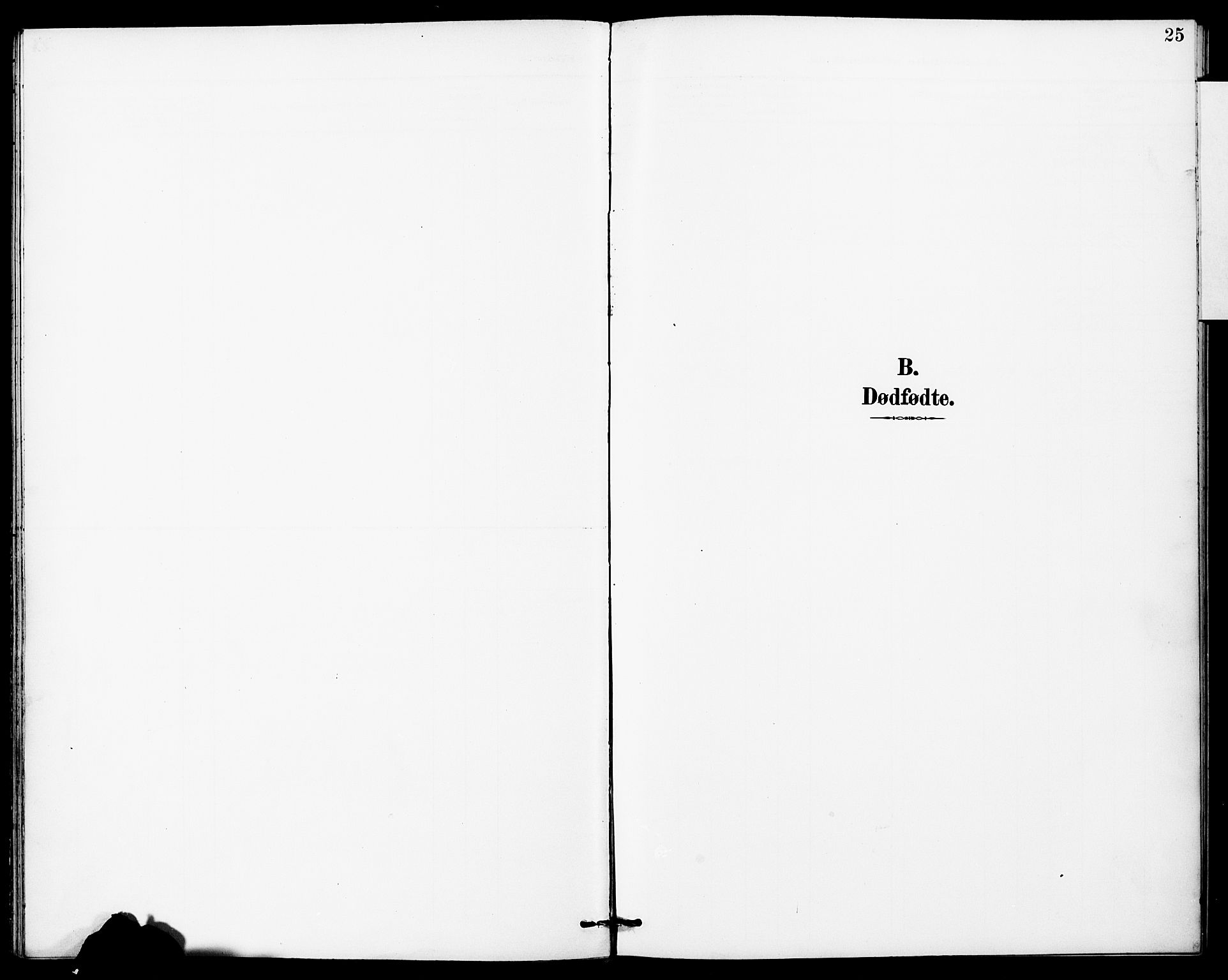 SAT, Ministerialprotokoller, klokkerbøker og fødselsregistre - Sør-Trøndelag, 683/L0948: Ministerialbok nr. 683A01, 1891-1902, s. 25