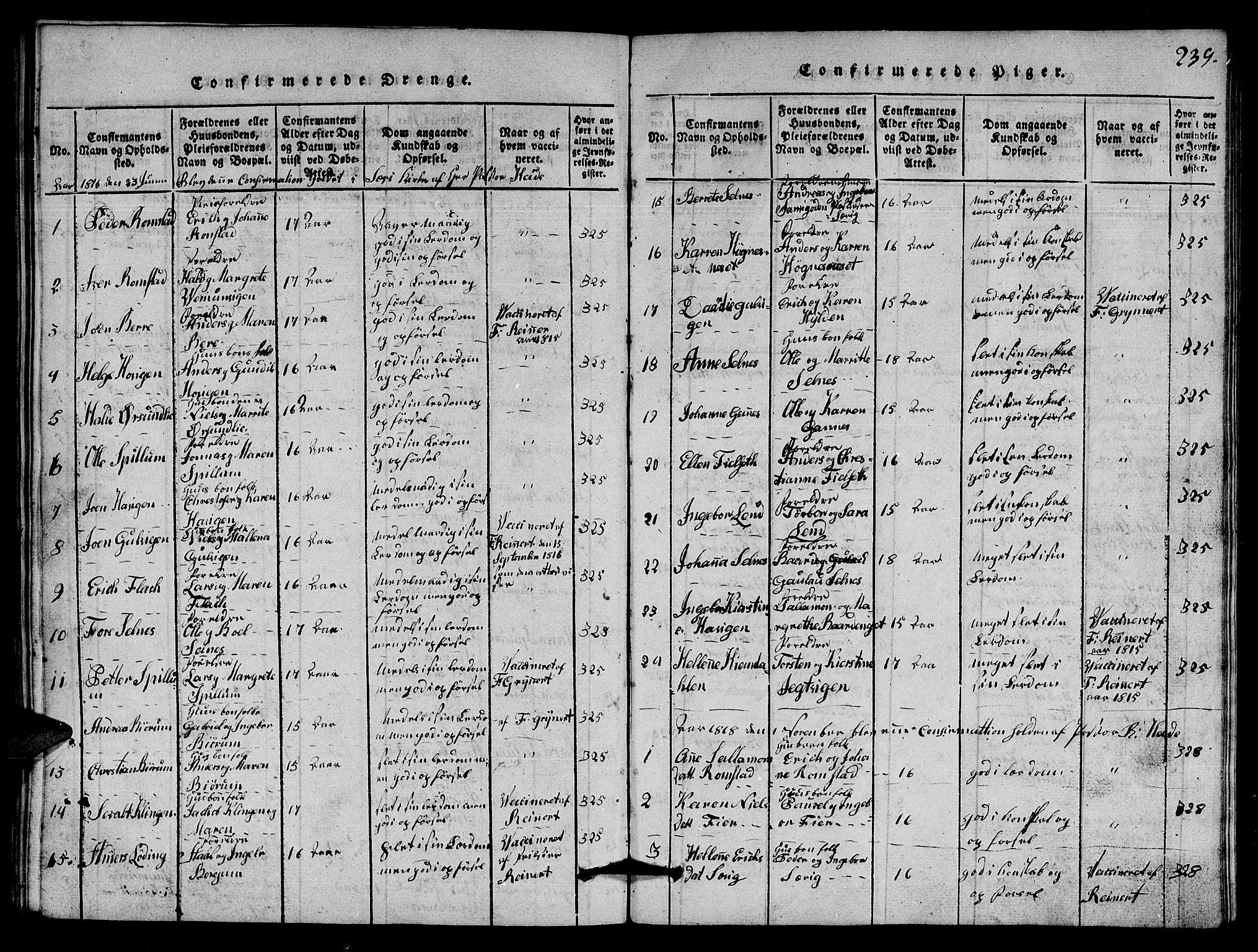 SAT, Ministerialprotokoller, klokkerbøker og fødselsregistre - Nord-Trøndelag, 770/L0590: Klokkerbok nr. 770C01, 1815-1824, s. 239