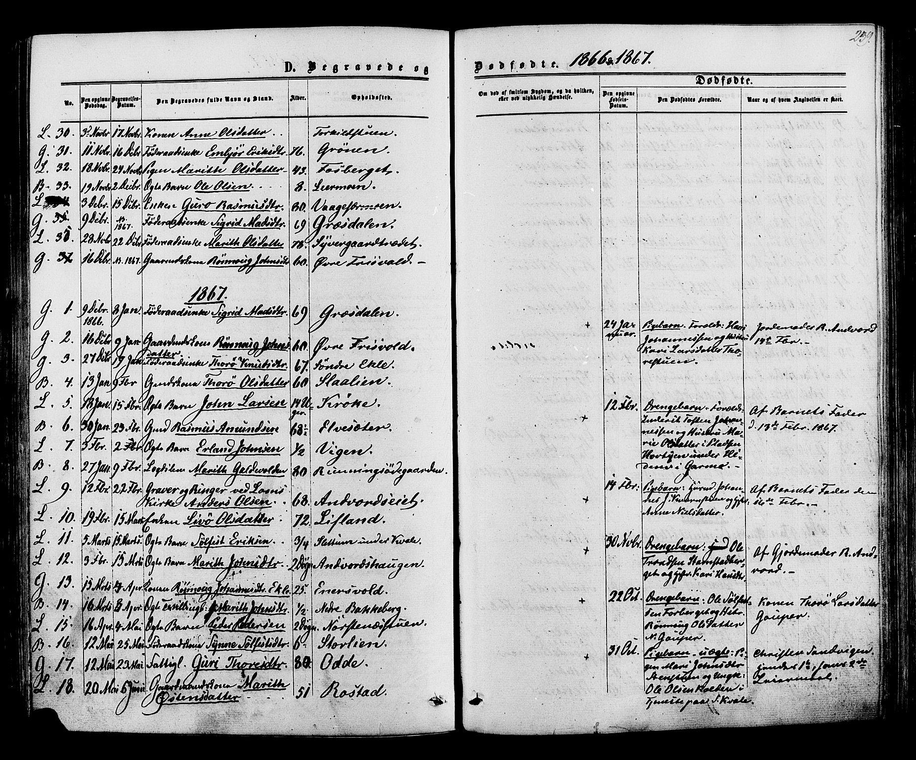 SAH, Lom prestekontor, K/L0007: Ministerialbok nr. 7, 1863-1884, s. 239