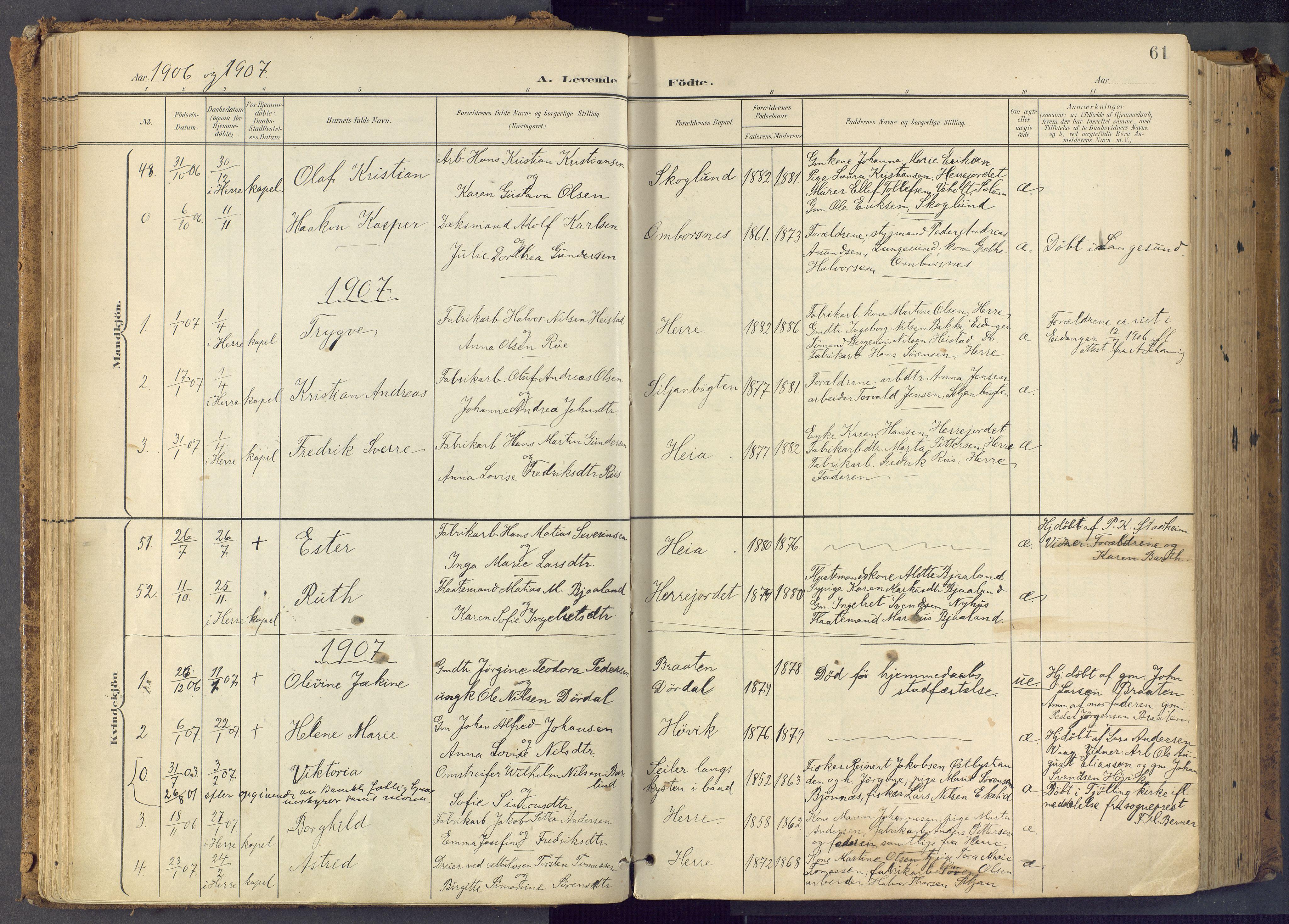 SAKO, Bamble kirkebøker, F/Fa/L0009: Ministerialbok nr. I 9, 1901-1917, s. 61