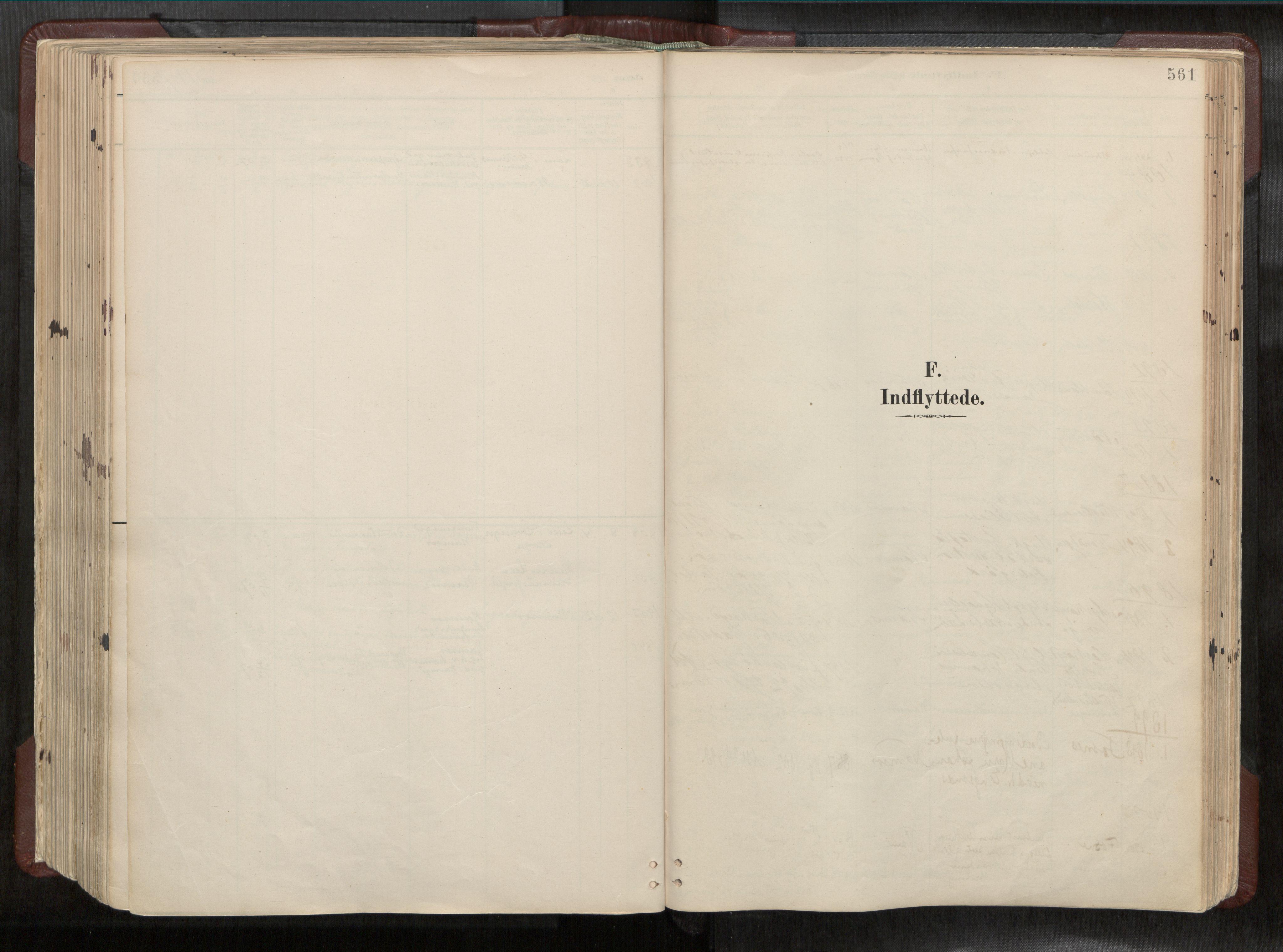 SAT, Ministerialprotokoller, klokkerbøker og fødselsregistre - Nord-Trøndelag, 768/L0579a: Ministerialbok nr. 768A14, 1887-1931, s. 561