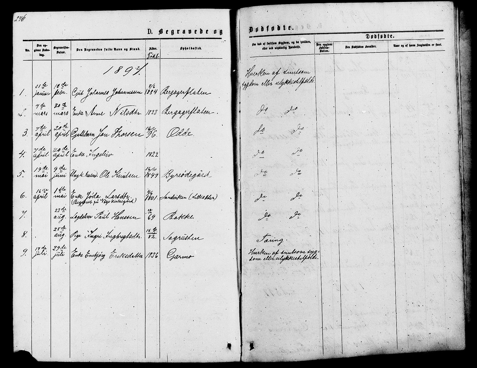 SAH, Lom prestekontor, L/L0005: Klokkerbok nr. 5, 1876-1901, s. 246-247