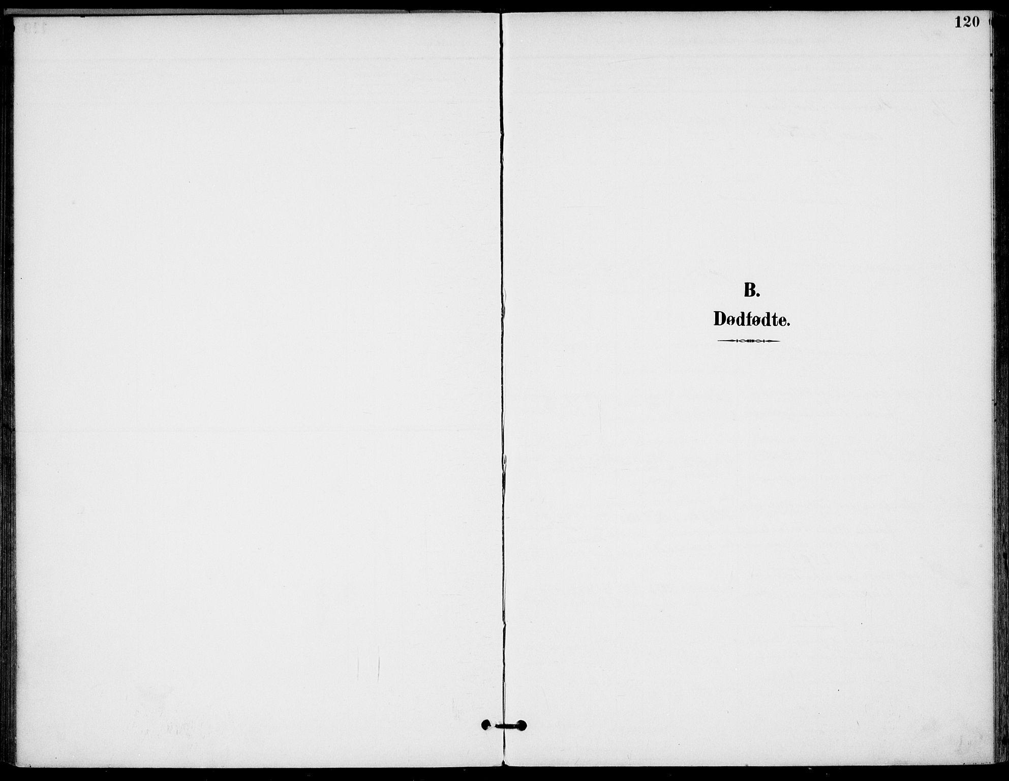 SAKO, Drangedal kirkebøker, F/Fa/L0012: Ministerialbok nr. 12, 1895-1905, s. 120
