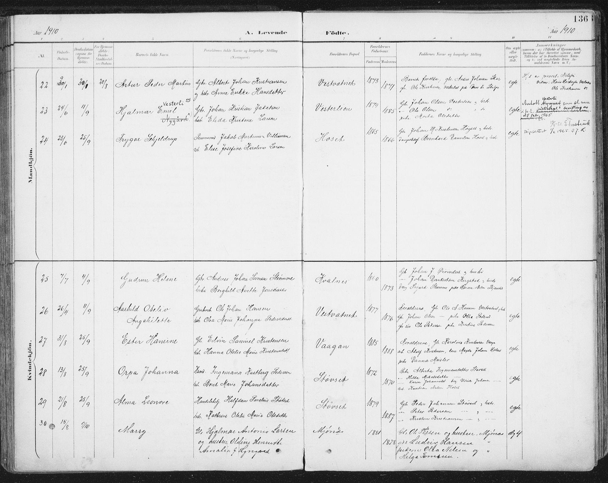 SAT, Ministerialprotokoller, klokkerbøker og fødselsregistre - Nordland, 852/L0741: Ministerialbok nr. 852A11, 1894-1917, s. 136