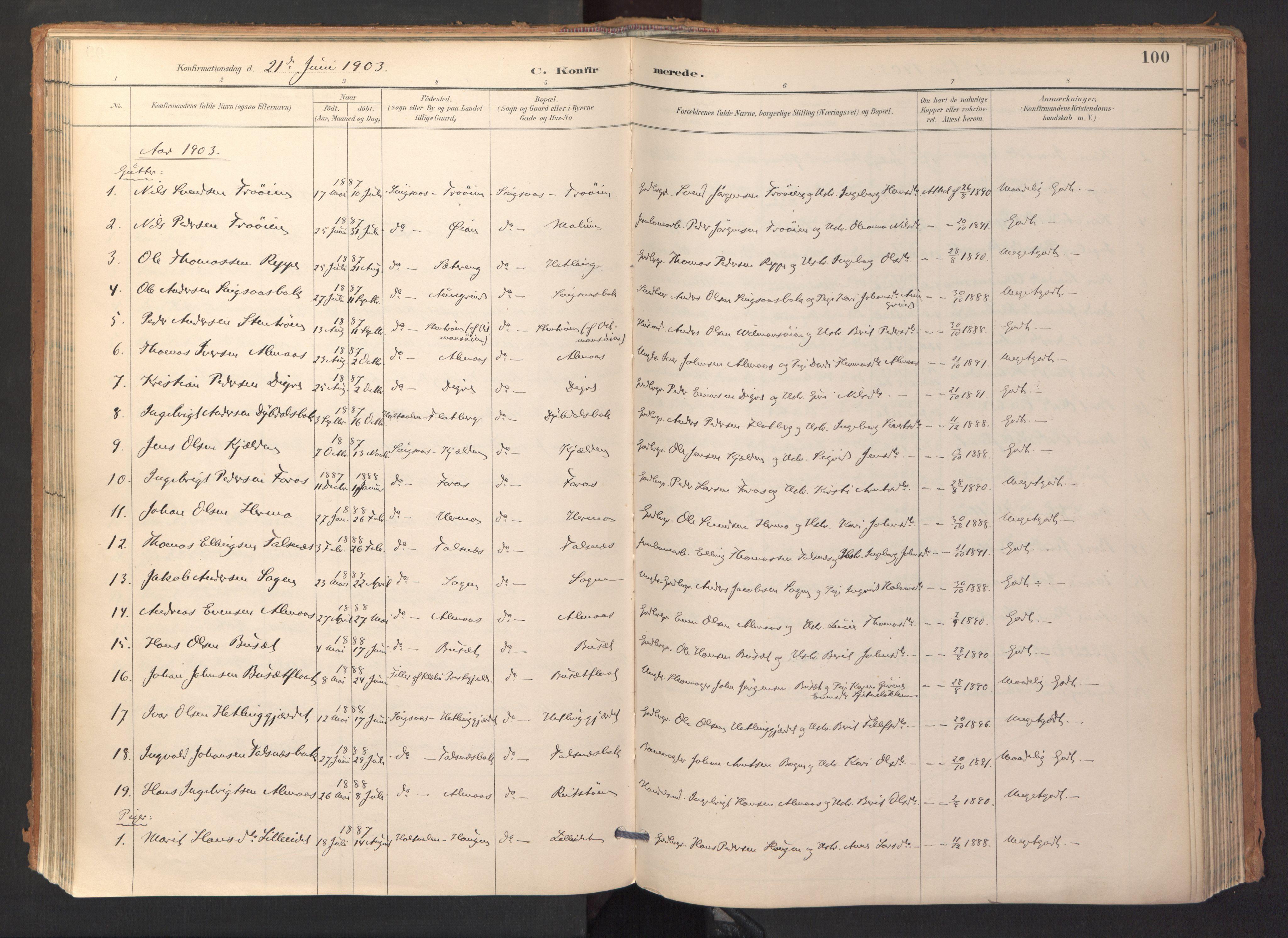 SAT, Ministerialprotokoller, klokkerbøker og fødselsregistre - Sør-Trøndelag, 688/L1025: Ministerialbok nr. 688A02, 1891-1909, s. 100