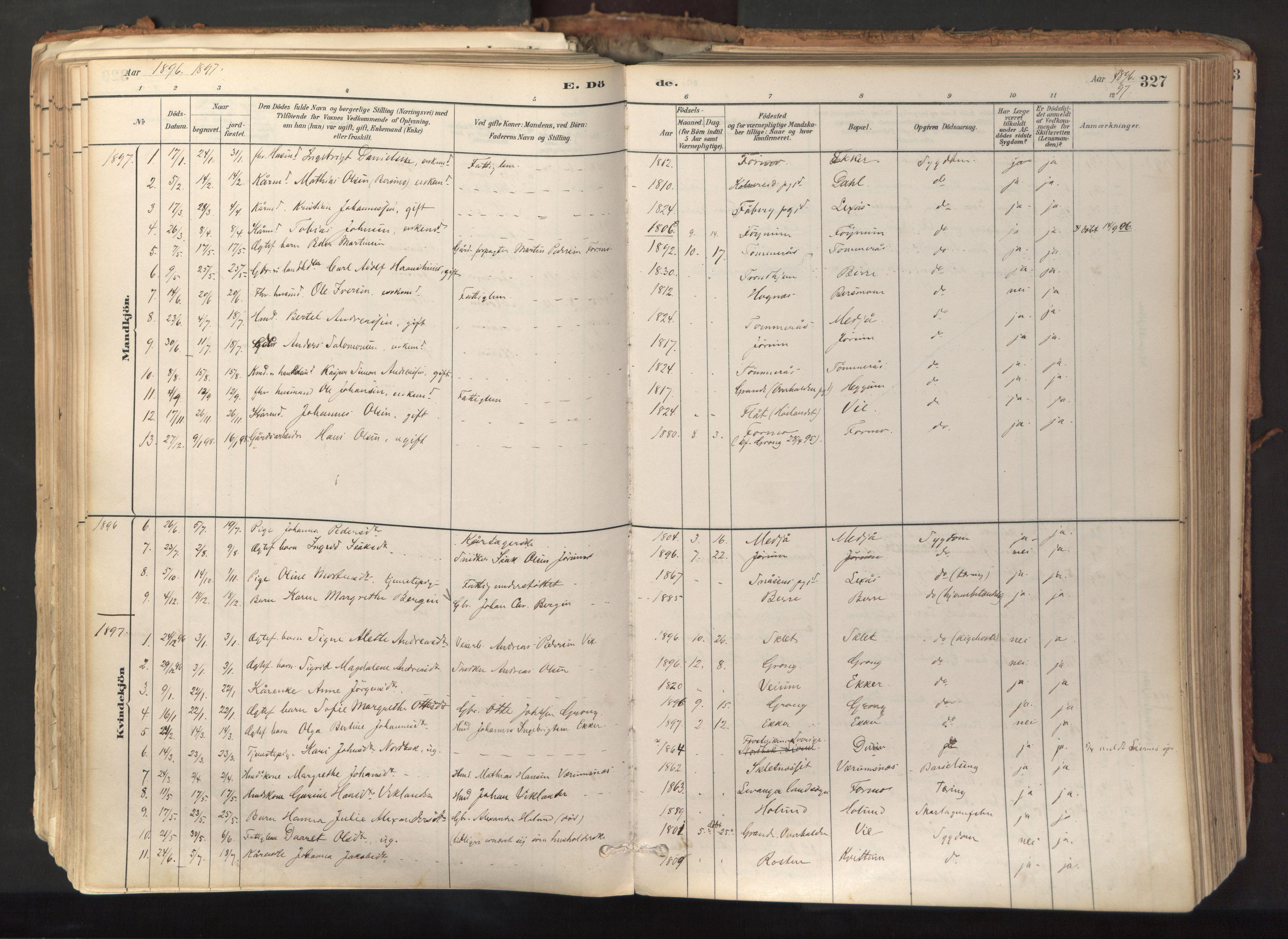 SAT, Ministerialprotokoller, klokkerbøker og fødselsregistre - Nord-Trøndelag, 758/L0519: Ministerialbok nr. 758A04, 1880-1926, s. 327