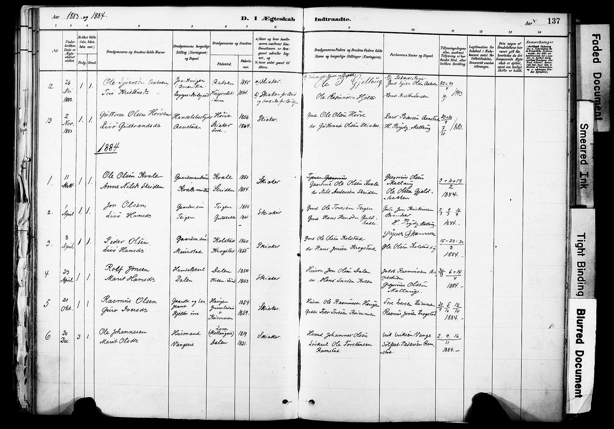 SAH, Skjåk prestekontor, Ministerialbok nr. 3, 1880-1907, s. 137