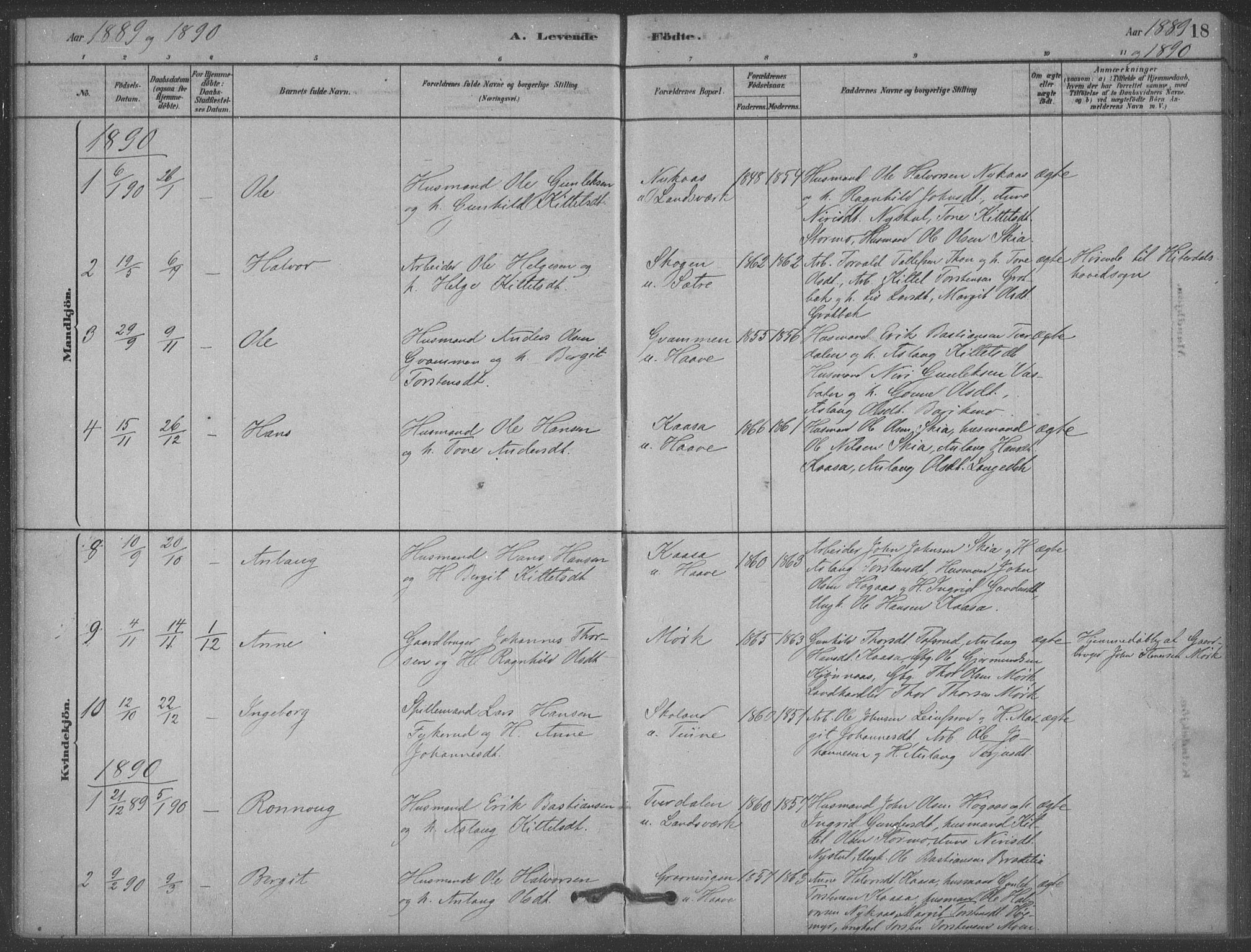 SAKO, Heddal kirkebøker, F/Fb/L0002: Ministerialbok nr. II 2, 1878-1913, s. 18