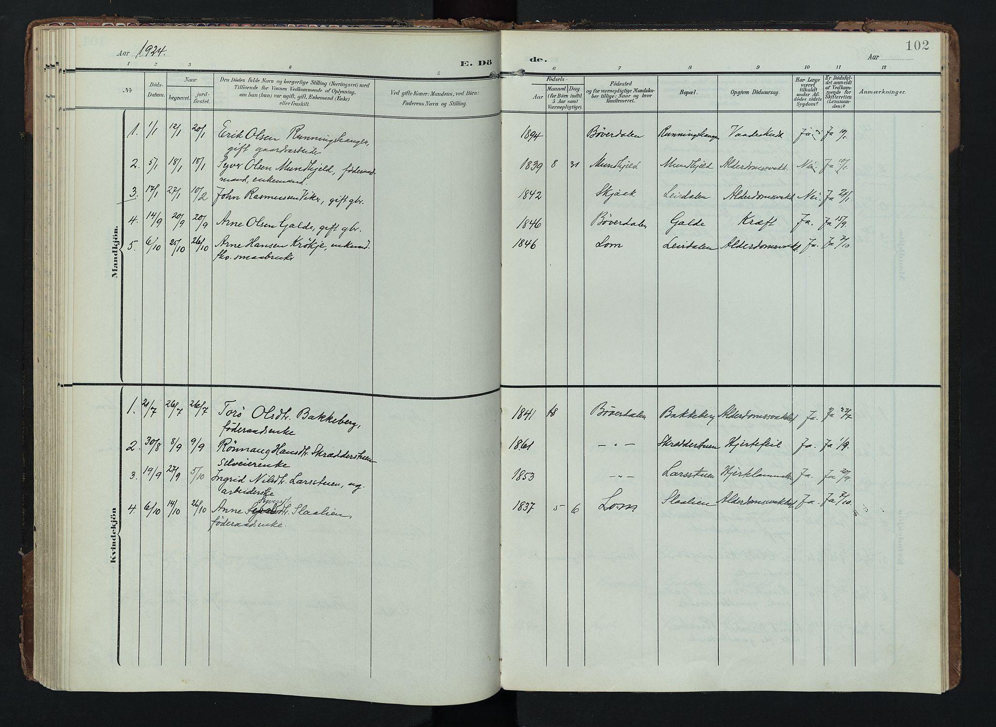 SAH, Lom prestekontor, K/L0012: Ministerialbok nr. 12, 1904-1928, s. 102