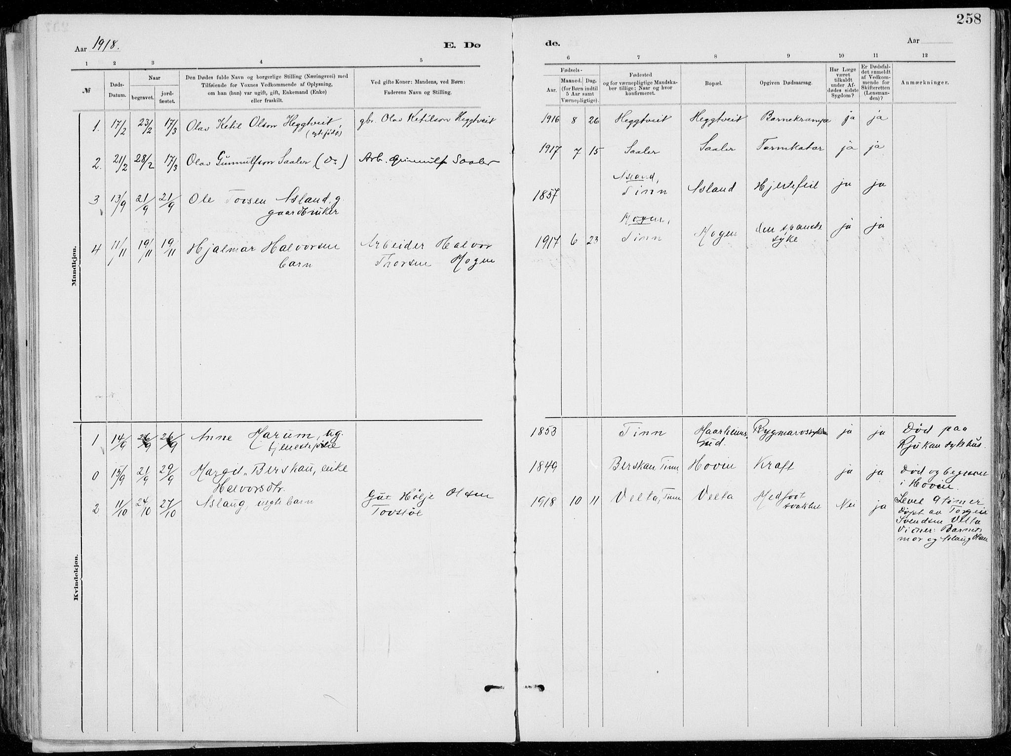 SAKO, Tinn kirkebøker, F/Fa/L0007: Ministerialbok nr. I 7, 1878-1922, s. 258