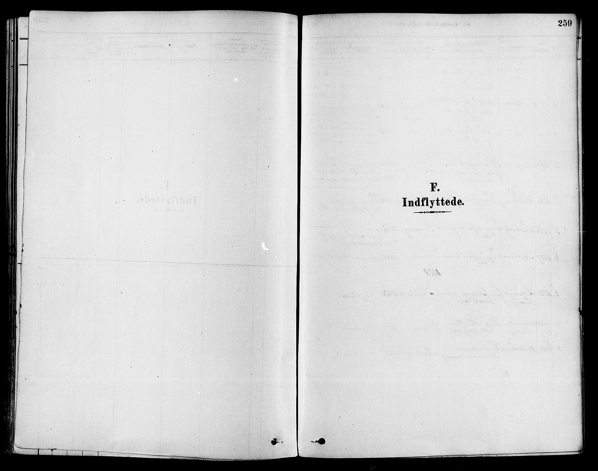 SAKO, Sigdal kirkebøker, F/Fa/L0011: Ministerialbok nr. I 11, 1879-1887, s. 259