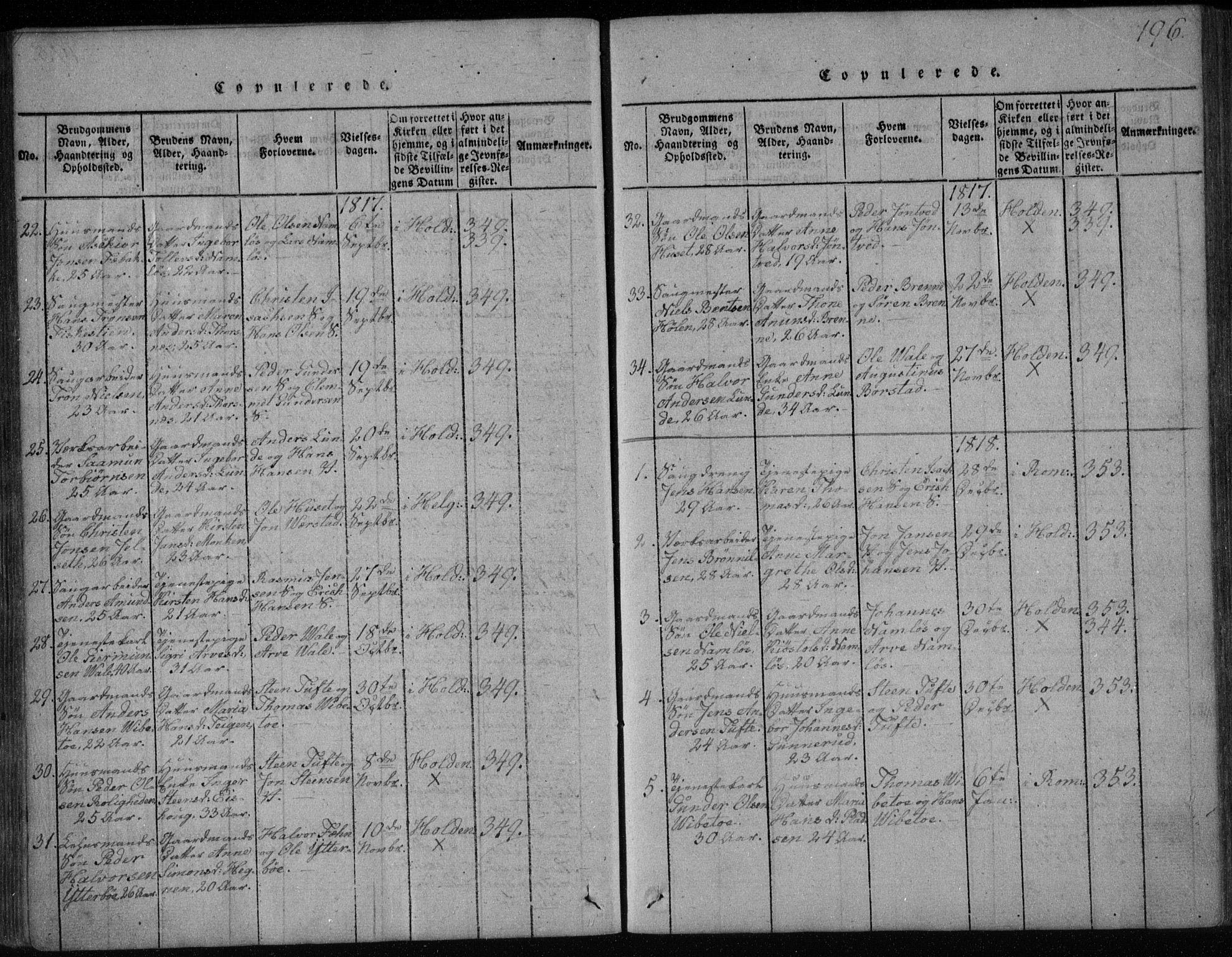 SAKO, Holla kirkebøker, F/Fa/L0003: Ministerialbok nr. 3, 1815-1830, s. 196