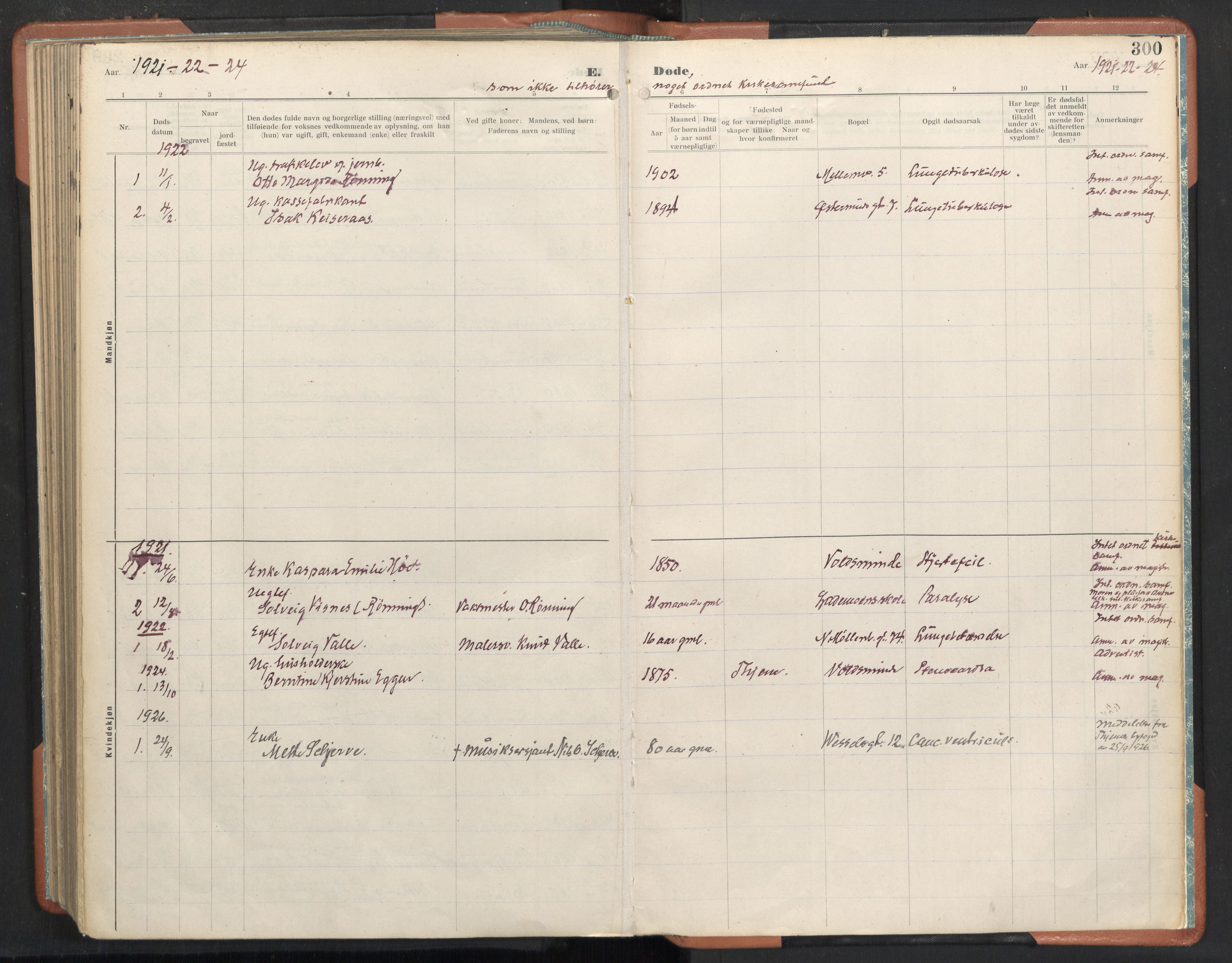 SAT, Ministerialprotokoller, klokkerbøker og fødselsregistre - Sør-Trøndelag, 605/L0245: Ministerialbok nr. 605A07, 1916-1938, s. 300