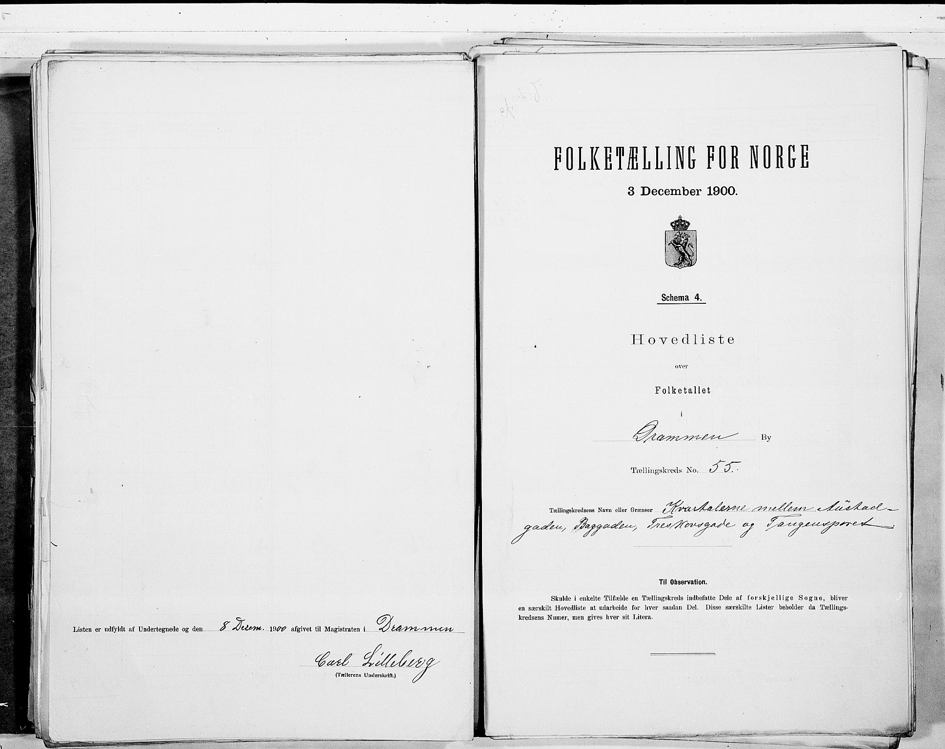 RA, Folketelling 1900 for 0602 Drammen kjøpstad, 1900, s. 115