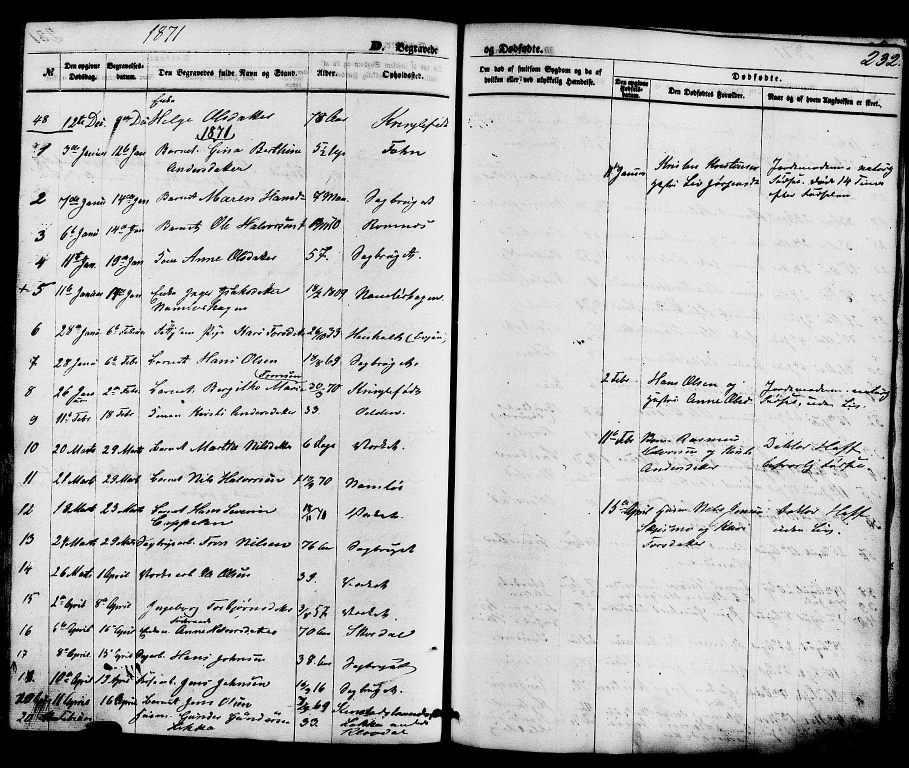 SAKO, Holla kirkebøker, F/Fa/L0007: Ministerialbok nr. 7, 1869-1881, s. 232