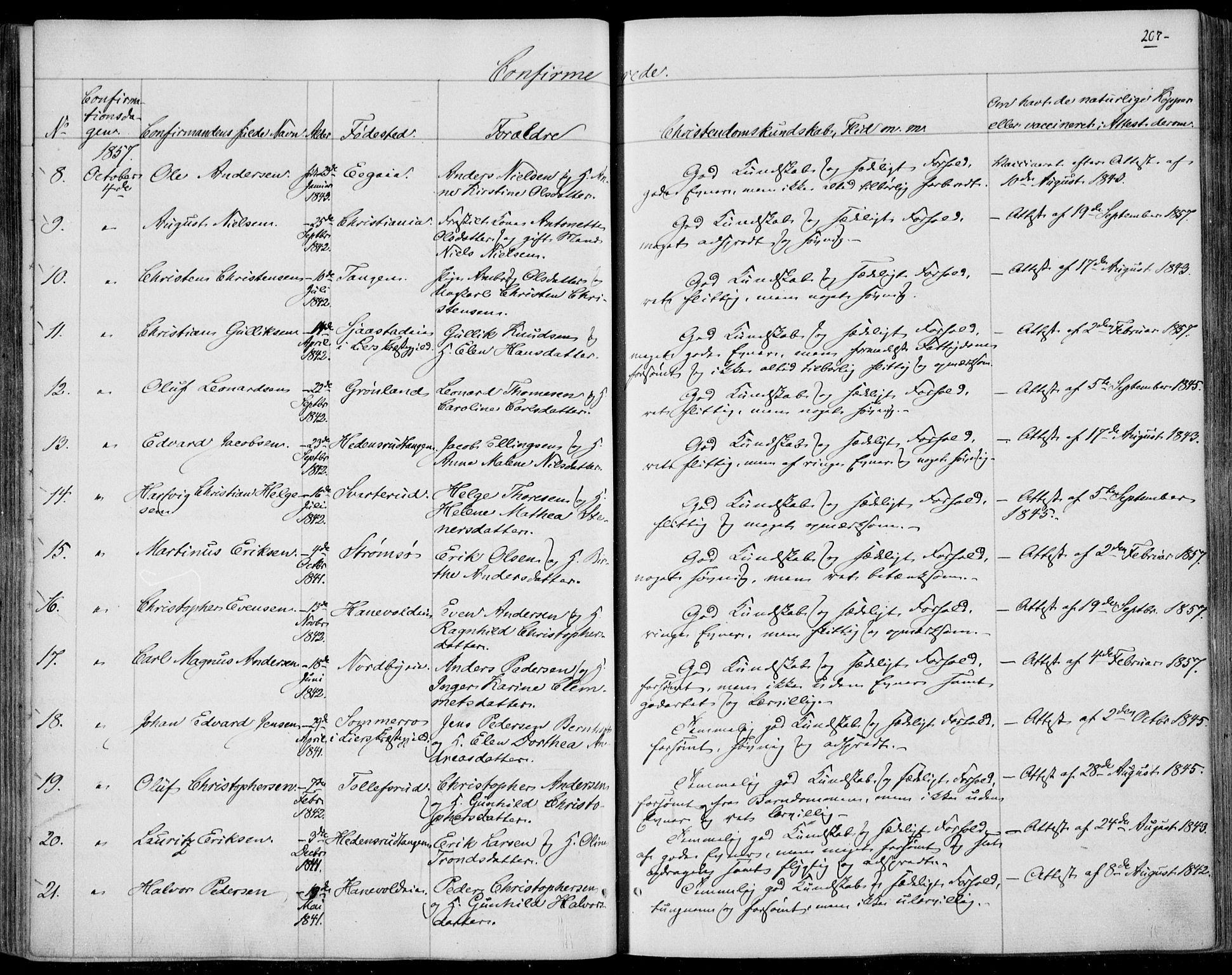 SAKO, Skoger kirkebøker, F/Fa/L0003: Ministerialbok nr. I 3, 1842-1861, s. 207