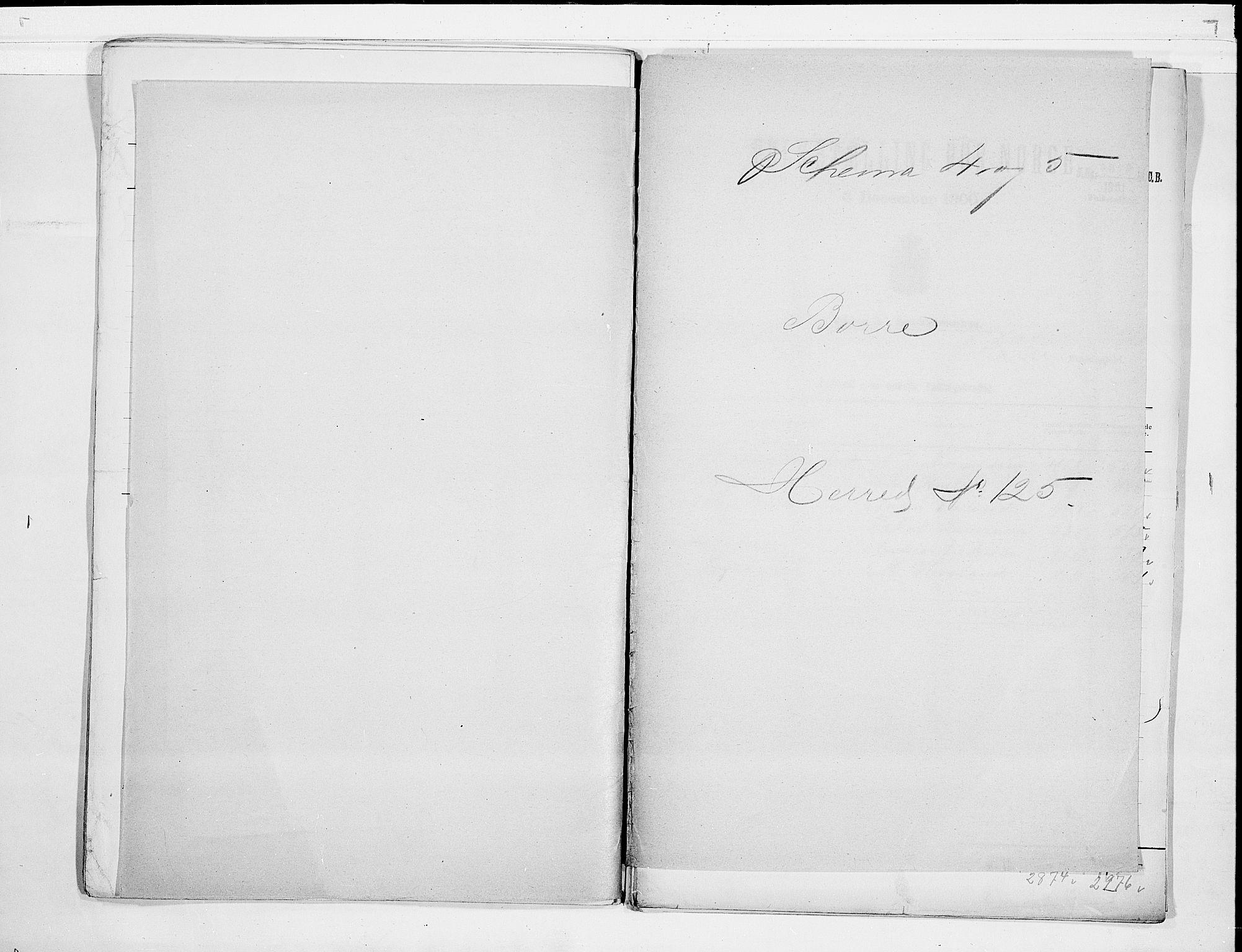 RA, Folketelling 1900 for 0717 Borre herred, 1900, s. 1