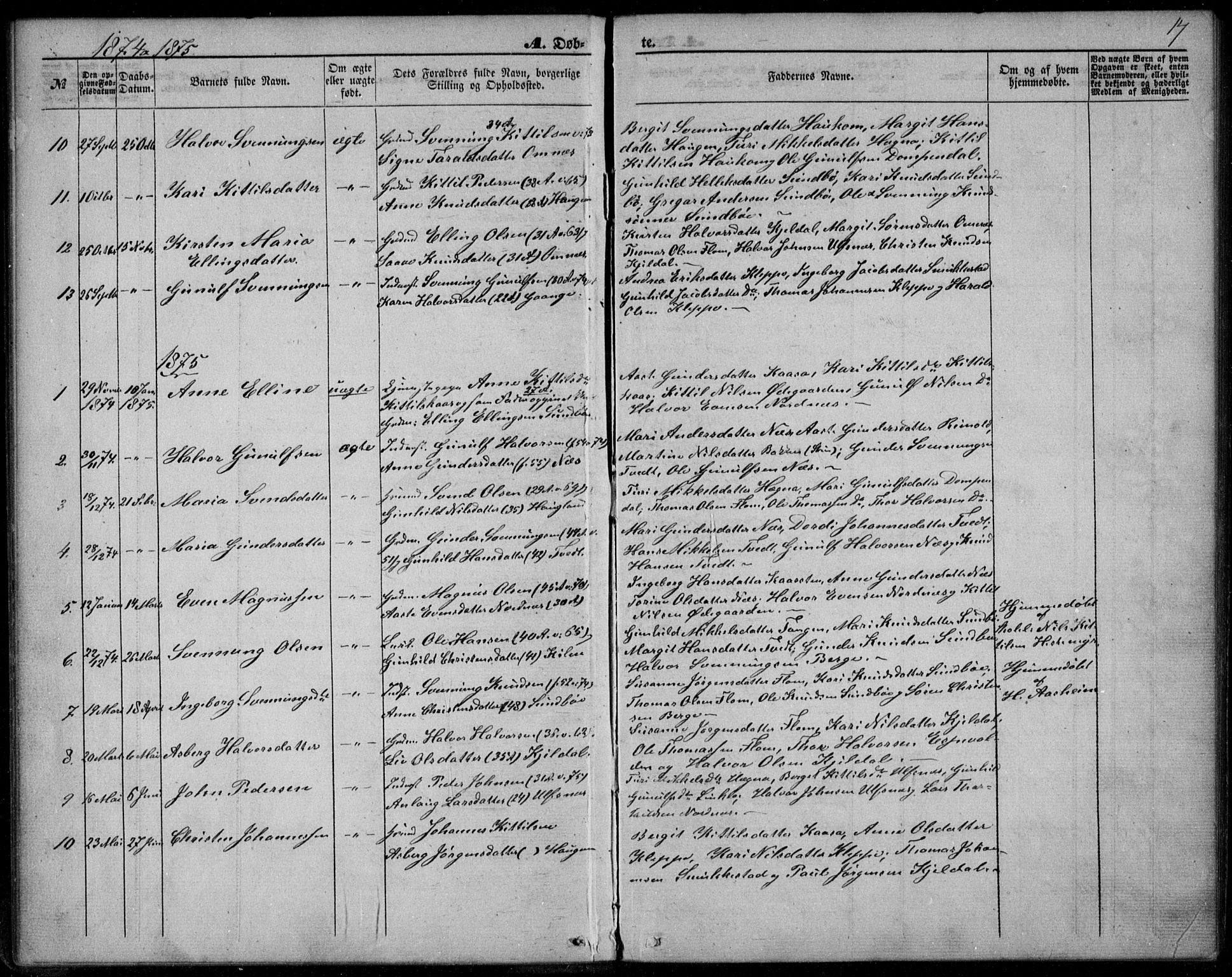 SAKO, Lunde kirkebøker, F/Fb/L0002: Ministerialbok nr. II 2, 1861-1881, s. 17
