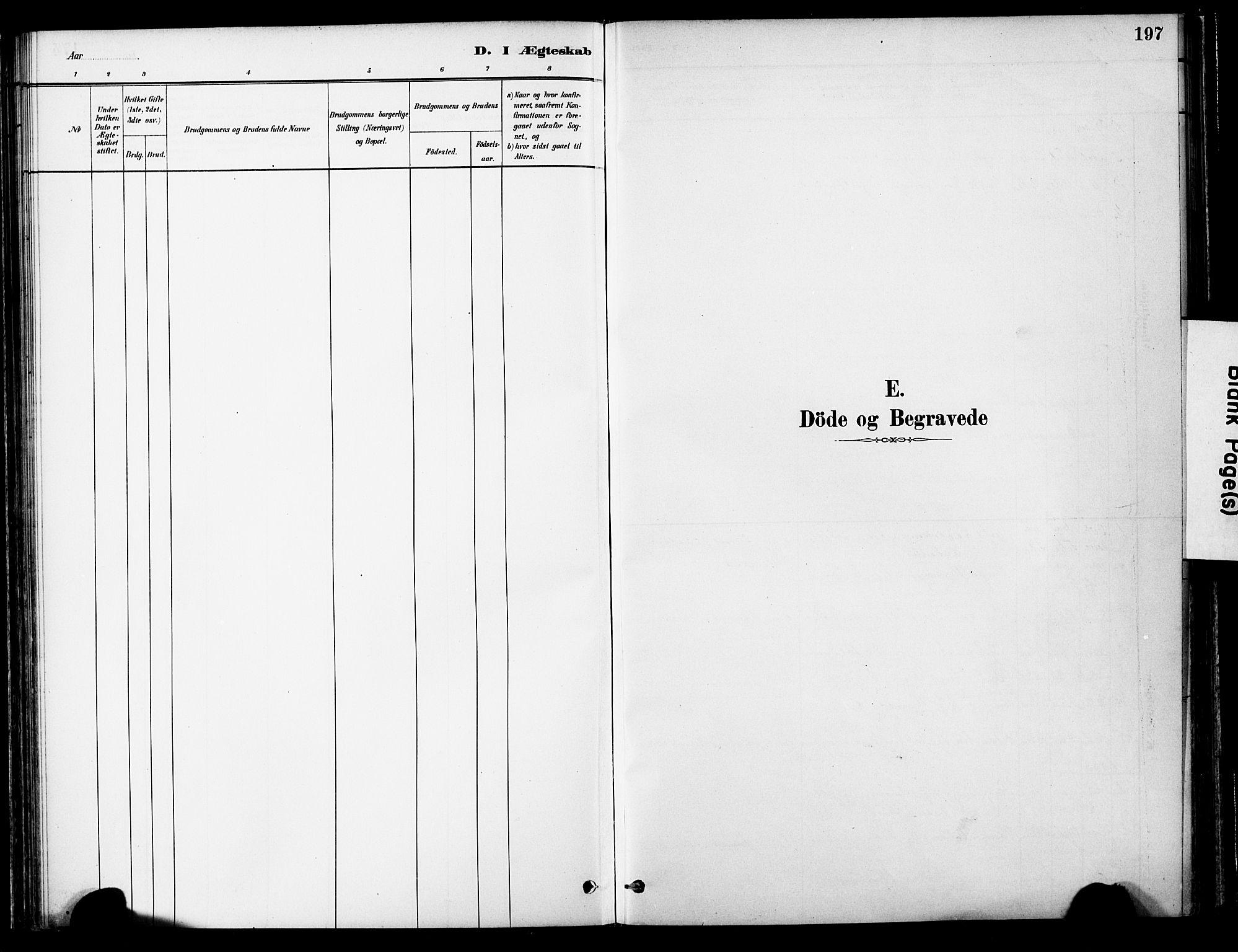 SAT, Ministerialprotokoller, klokkerbøker og fødselsregistre - Nord-Trøndelag, 755/L0494: Ministerialbok nr. 755A03, 1882-1902, s. 197
