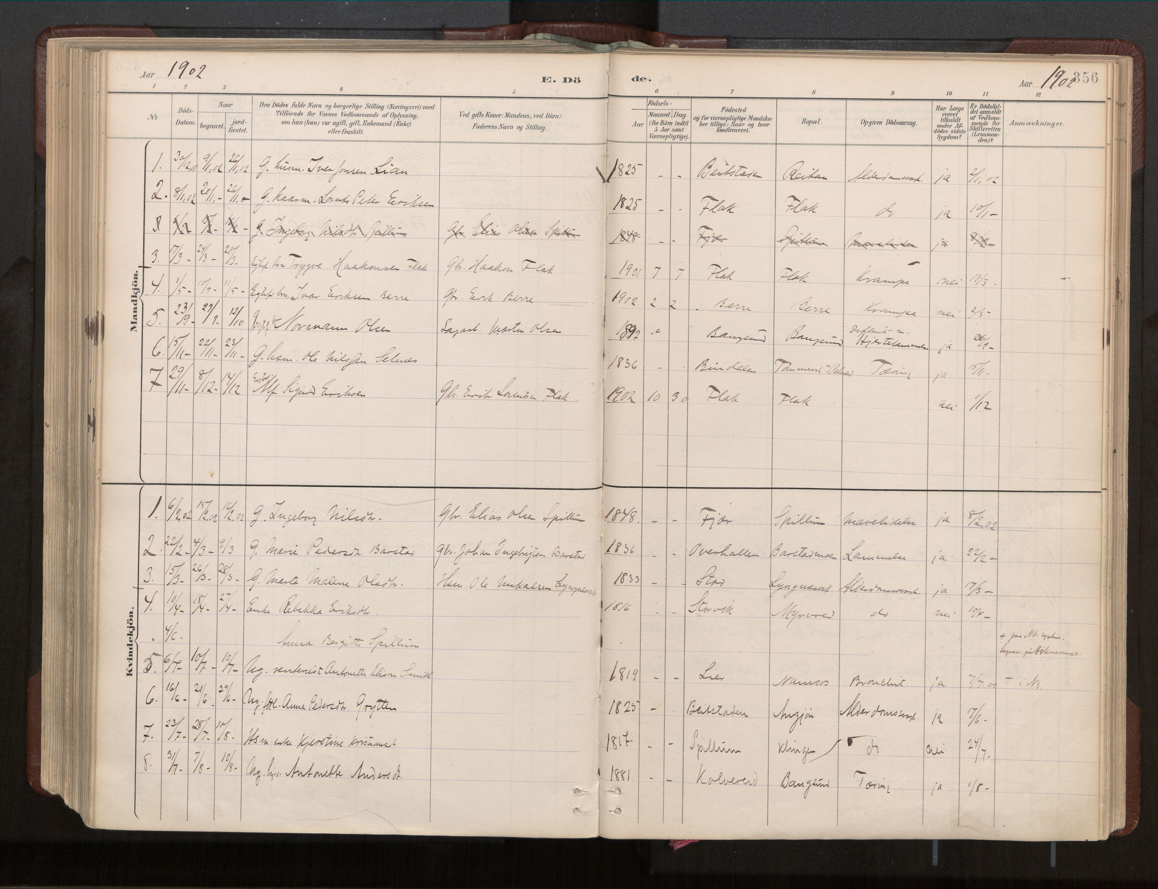 SAT, Ministerialprotokoller, klokkerbøker og fødselsregistre - Nord-Trøndelag, 770/L0589: Ministerialbok nr. 770A03, 1887-1929, s. 356