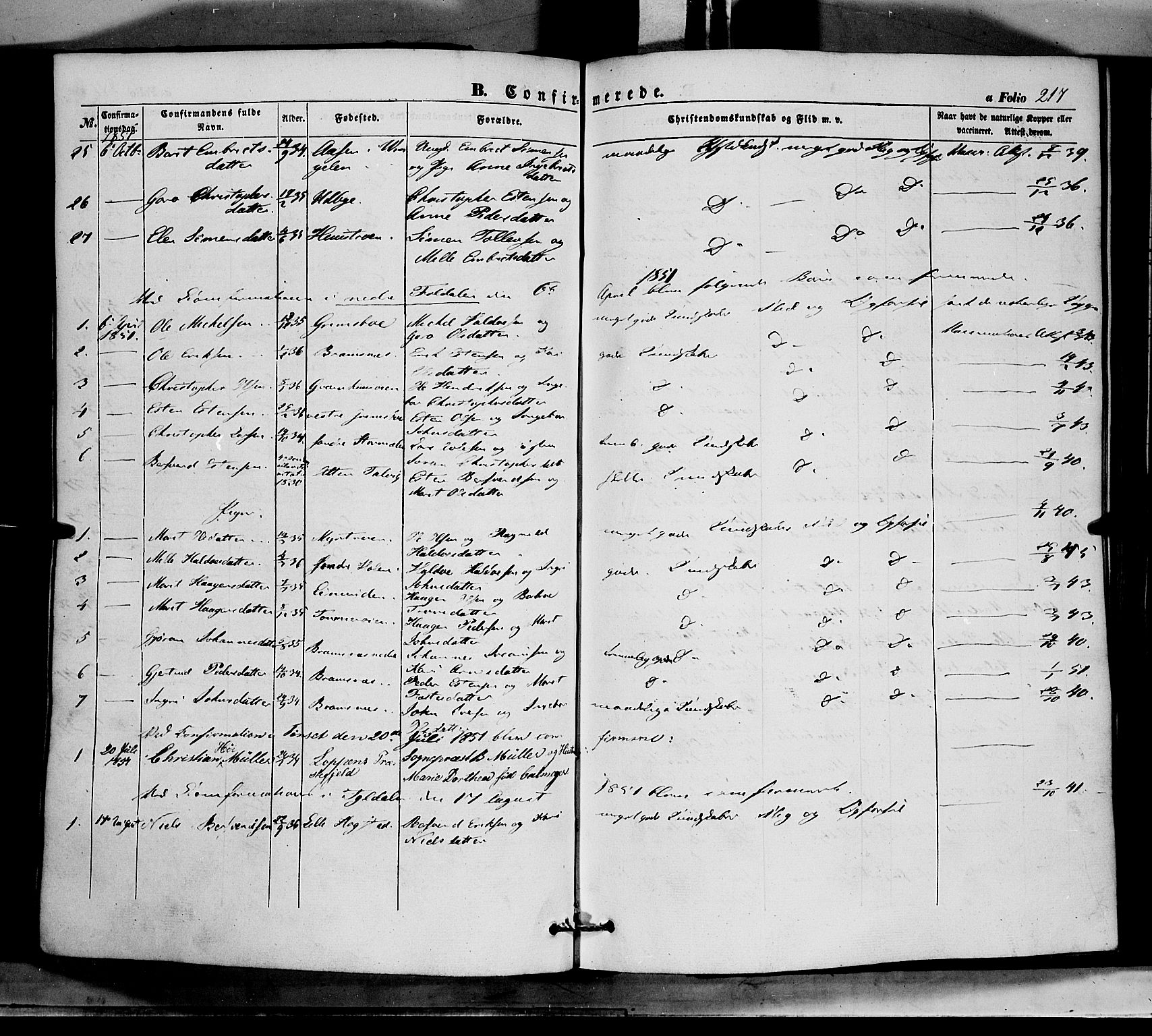 SAH, Tynset prestekontor, Ministerialbok nr. 20, 1848-1862, s. 217