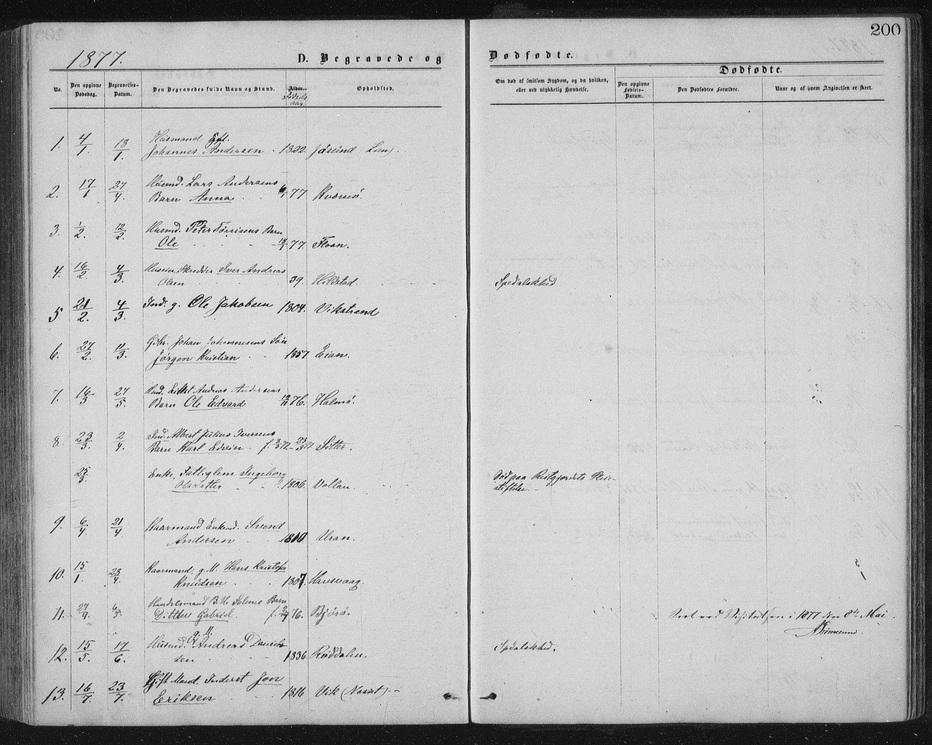 SAT, Ministerialprotokoller, klokkerbøker og fødselsregistre - Nord-Trøndelag, 771/L0596: Ministerialbok nr. 771A03, 1870-1884, s. 200