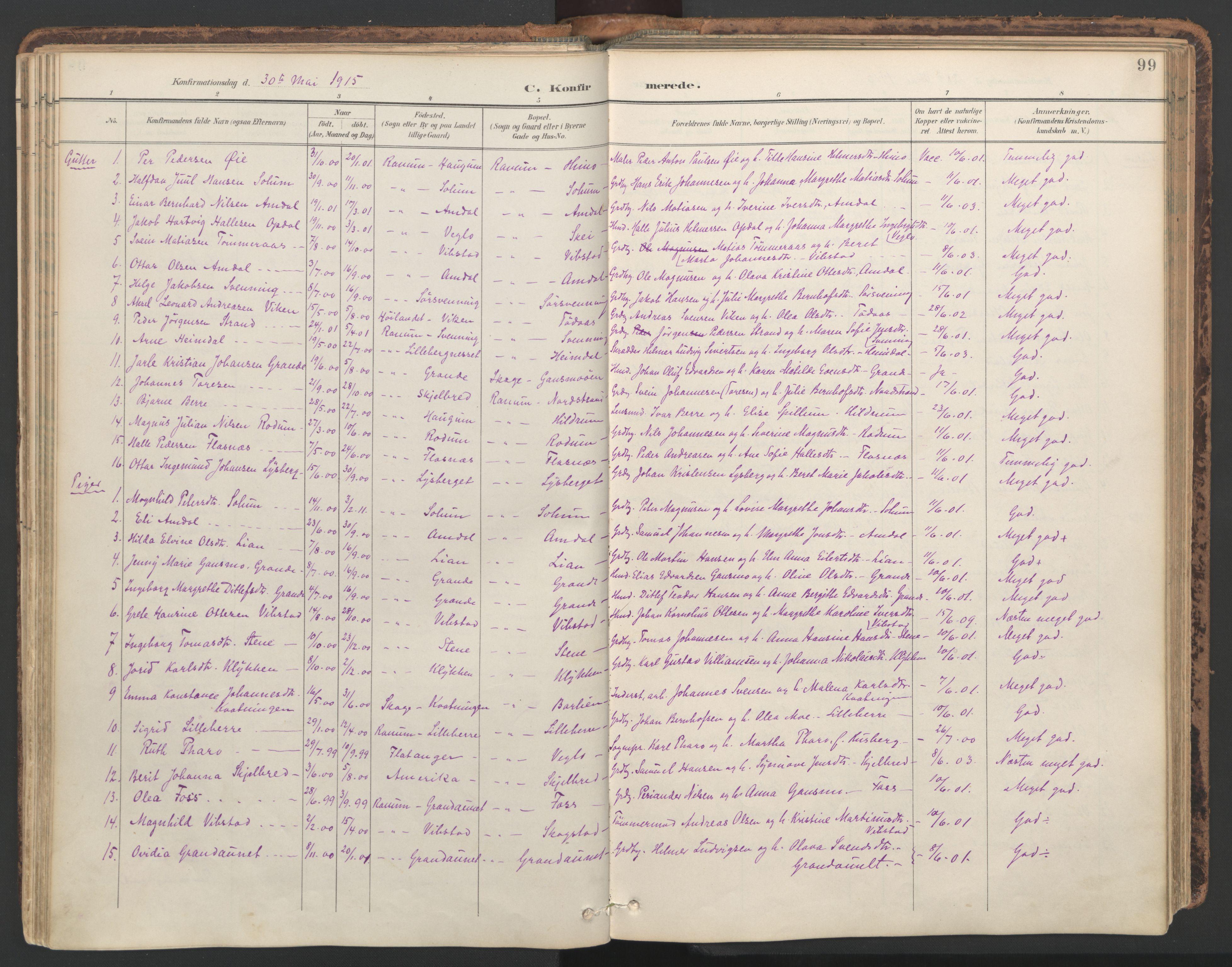 SAT, Ministerialprotokoller, klokkerbøker og fødselsregistre - Nord-Trøndelag, 764/L0556: Ministerialbok nr. 764A11, 1897-1924, s. 99