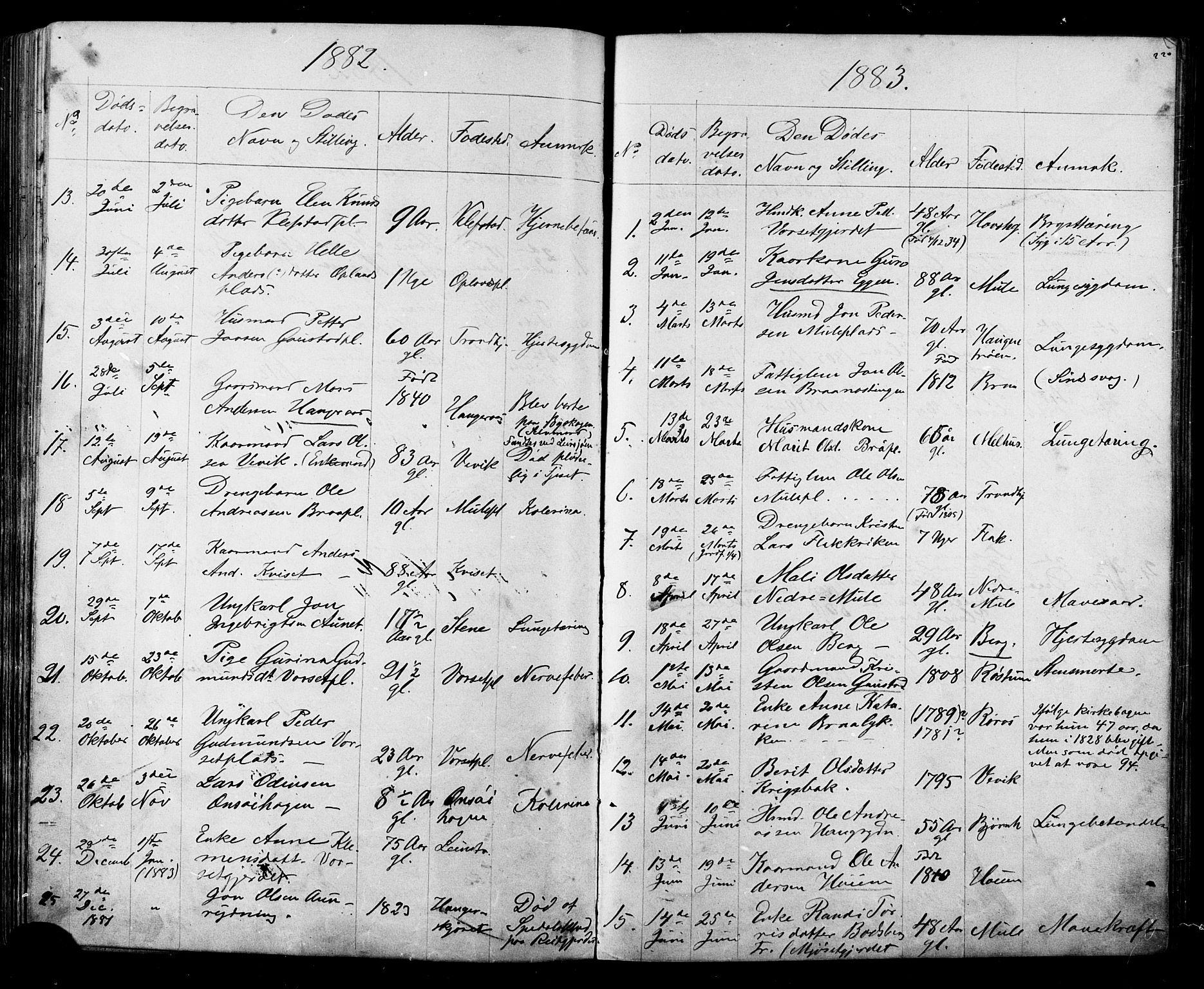SAT, Ministerialprotokoller, klokkerbøker og fødselsregistre - Sør-Trøndelag, 612/L0387: Klokkerbok nr. 612C03, 1874-1908, s. 220