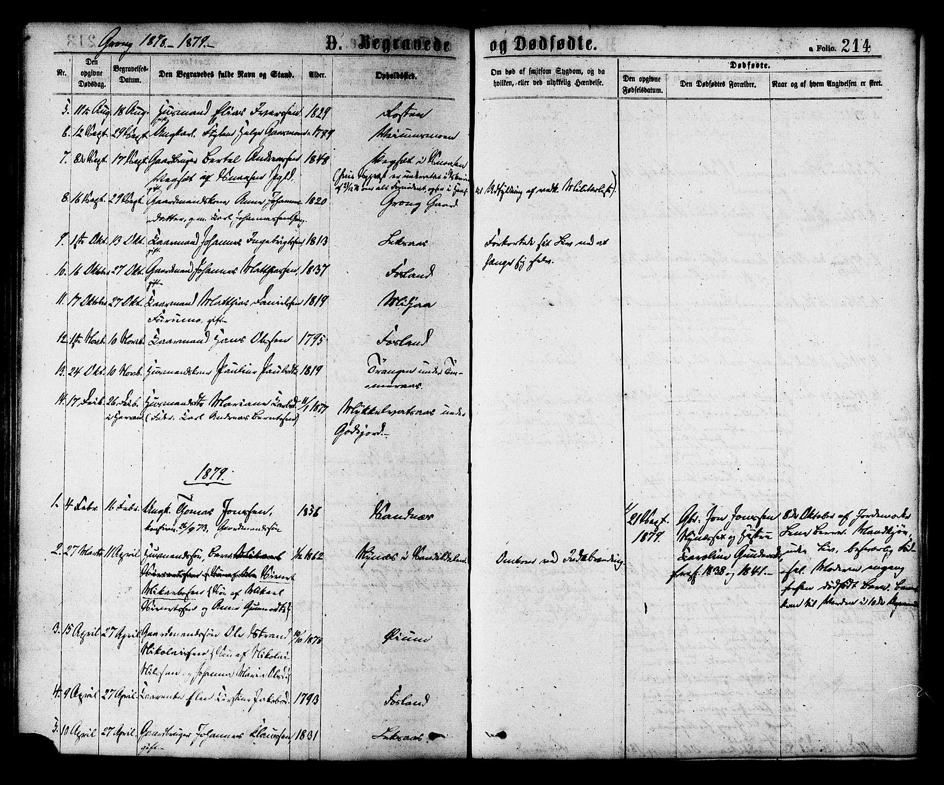 SAT, Ministerialprotokoller, klokkerbøker og fødselsregistre - Nord-Trøndelag, 758/L0516: Ministerialbok nr. 758A03 /1, 1869-1879, s. 214